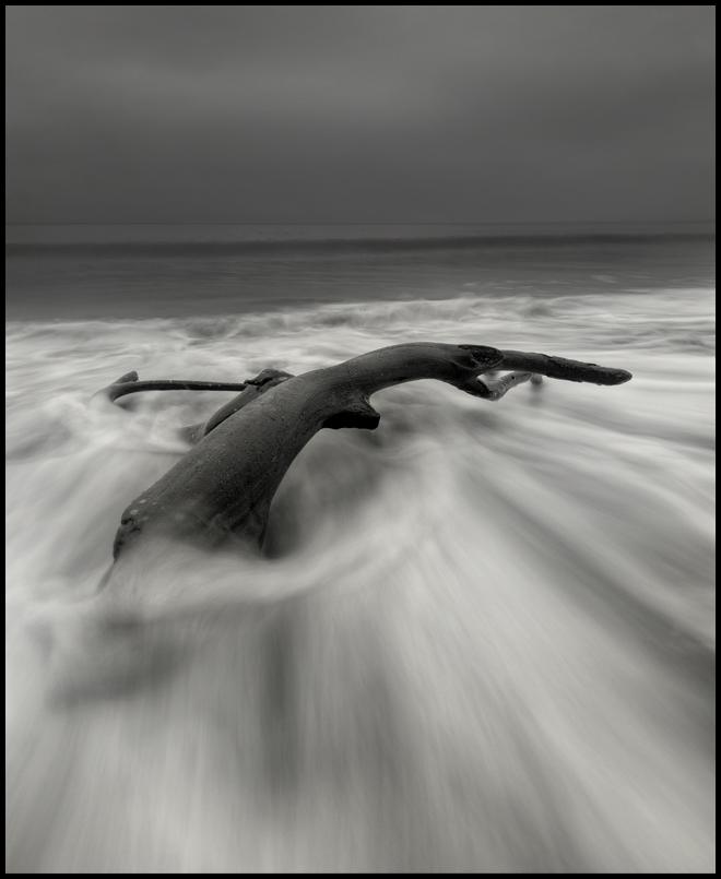 Photo in Nature | Author Румен Паисиев - rumci | PHOTO FORUM