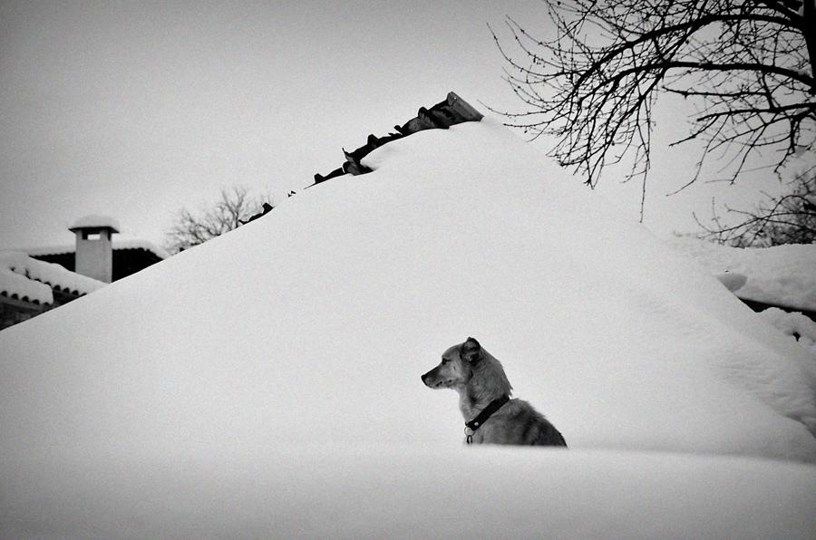 Някъде в .... | Author GEORGI DRAGIEV - GALERIUSS | PHOTO FORUM