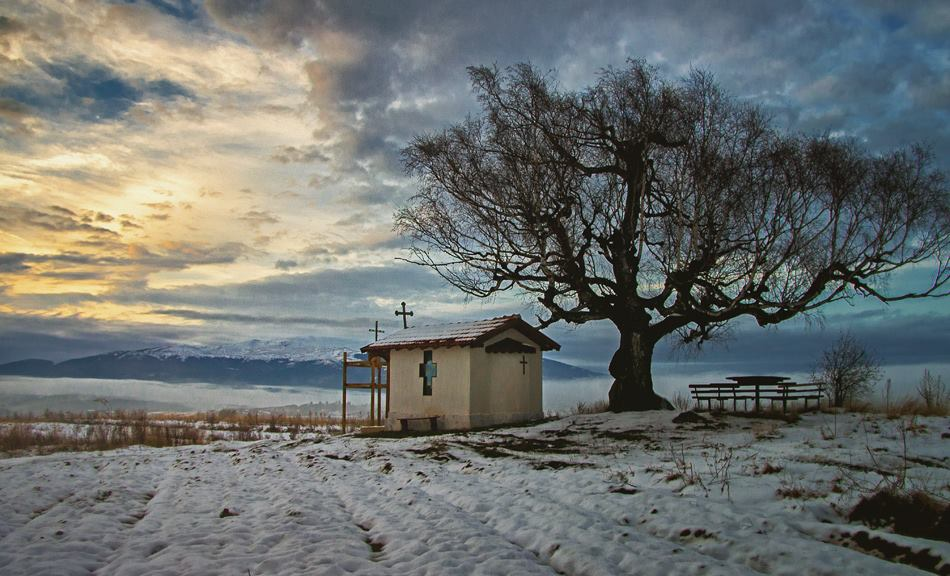 Photo in Nature | Author sofia atanasova - alivgo | PHOTO FORUM
