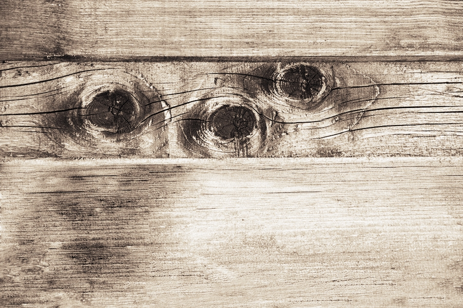Най-тъжните очи.   Author Ira Gencheva - ARIGO   PHOTO FORUM