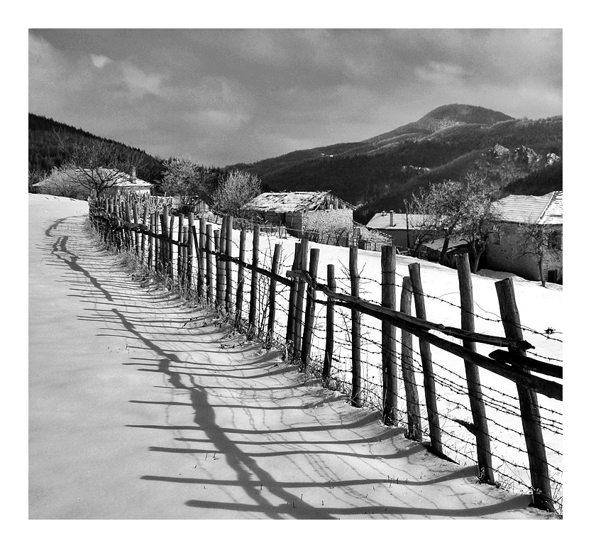 Photo in Everything else | Author dimitar kolev - dimitar_70 | PHOTO FORUM