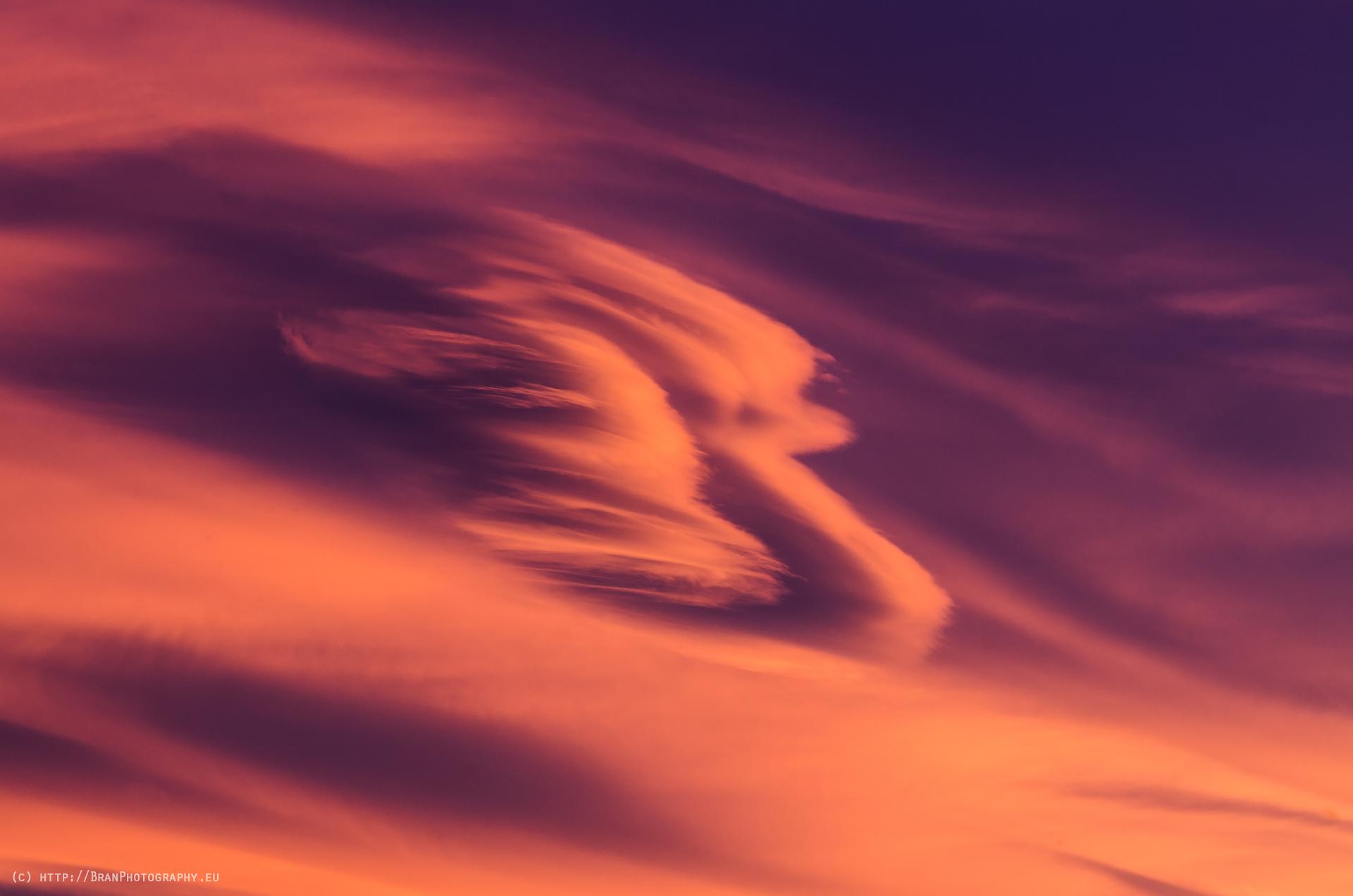 Лещичка под дебел юрган от ураган | Author Branislav Brankov - ReconProG | PHOTO FORUM
