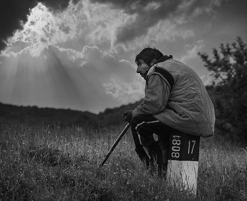 Самотни залези   Author Тencho Atanasov - ttamjt   PHOTO FORUM