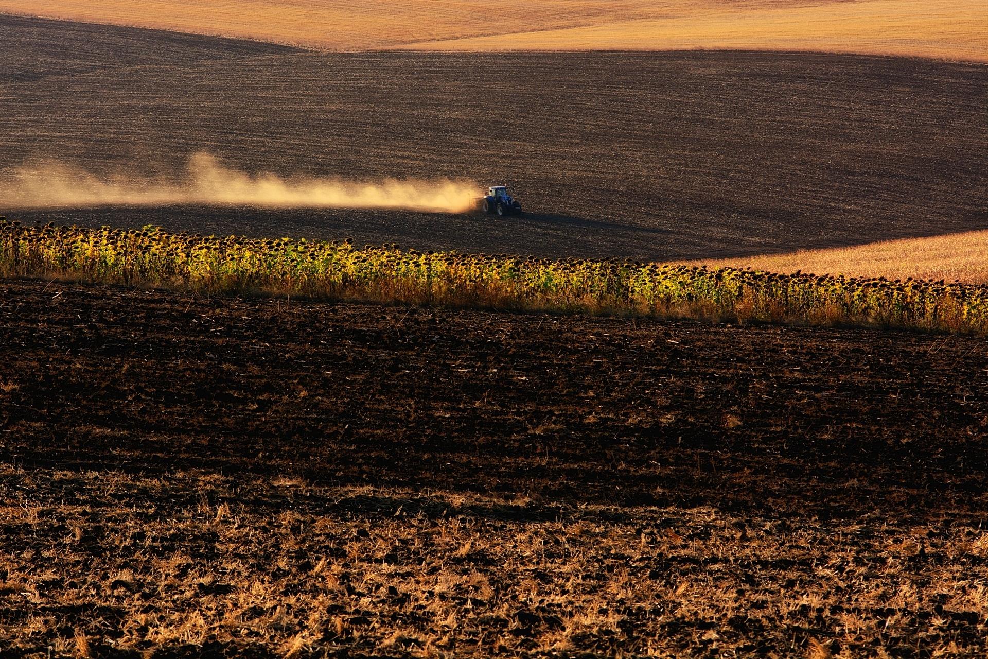 Притча за зърното | Author Ева  - Е.Шумкова | PHOTO FORUM