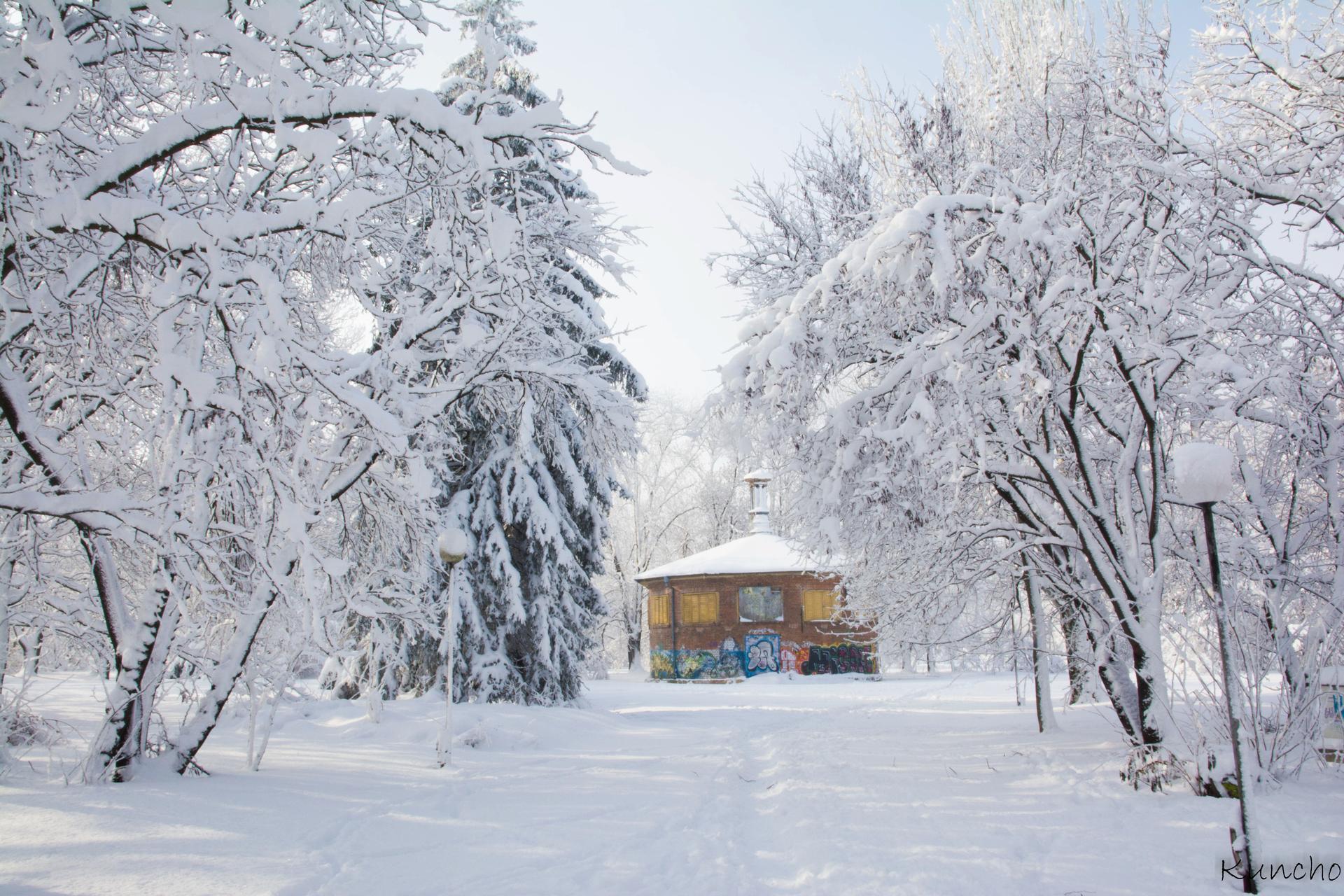 Парка в Русе