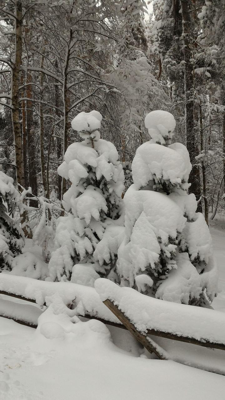 Младо семейство, щастливци.... радват се на снега.
