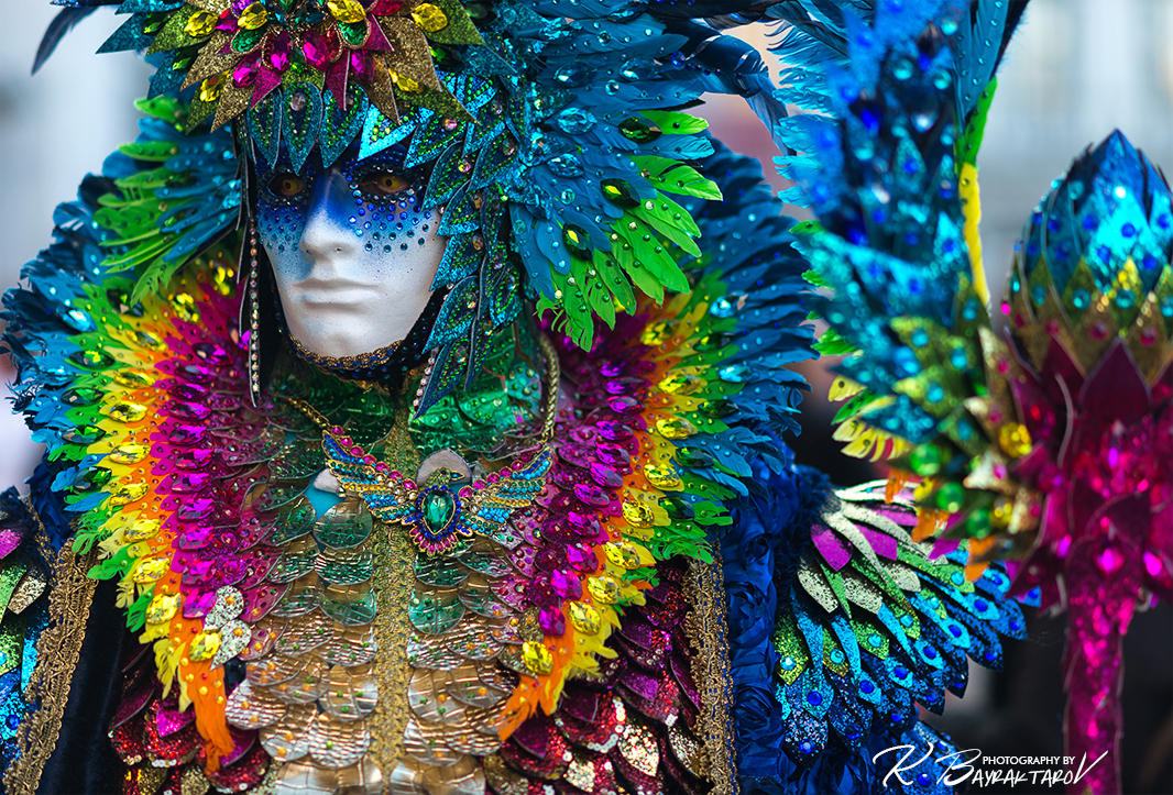 The Amazing Parrot - Carnival of Venice \'17
