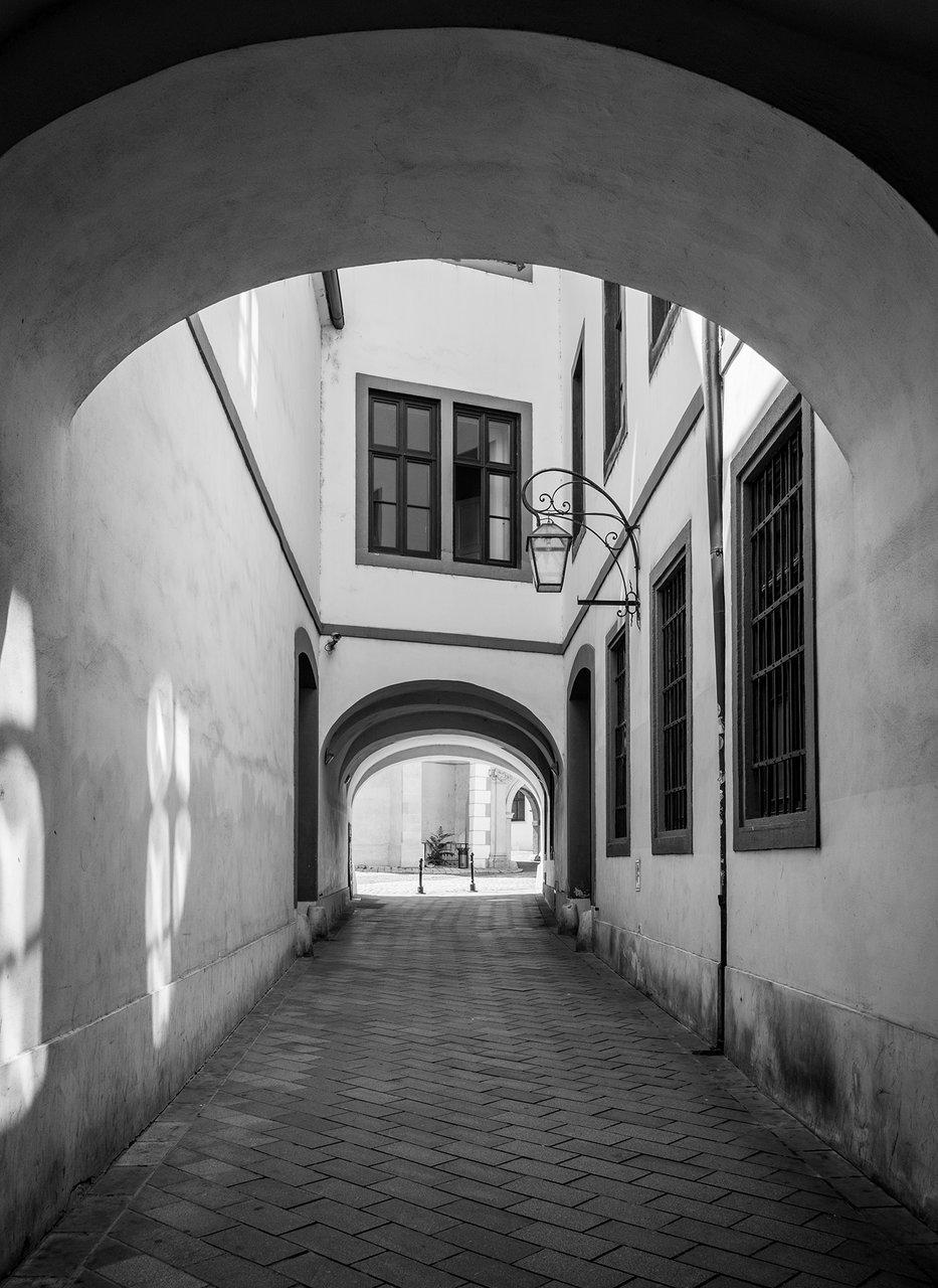В уличката | Author Elena Maslarova - LeniS | PHOTO FORUM