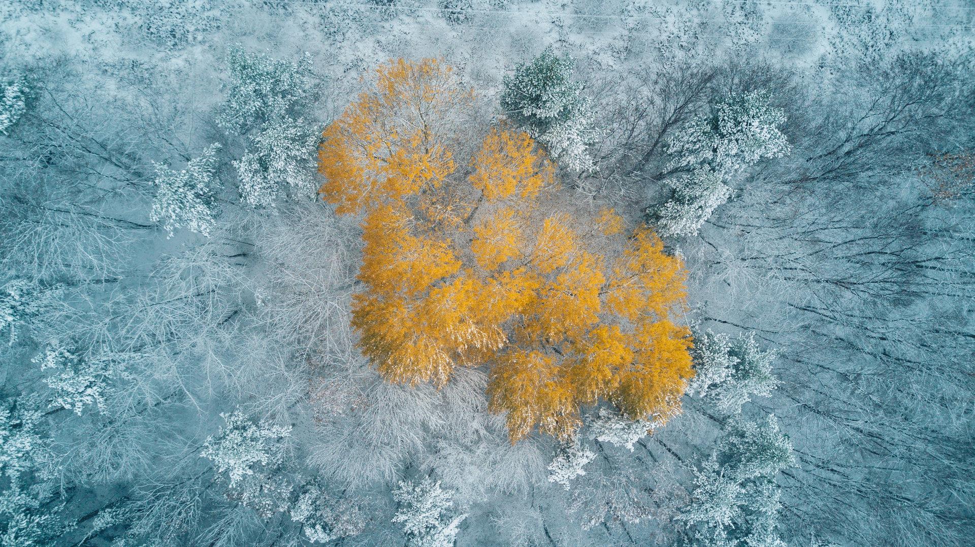Photo in Aerial | Author Илия Димитров - iliya.d | PHOTO FORUM