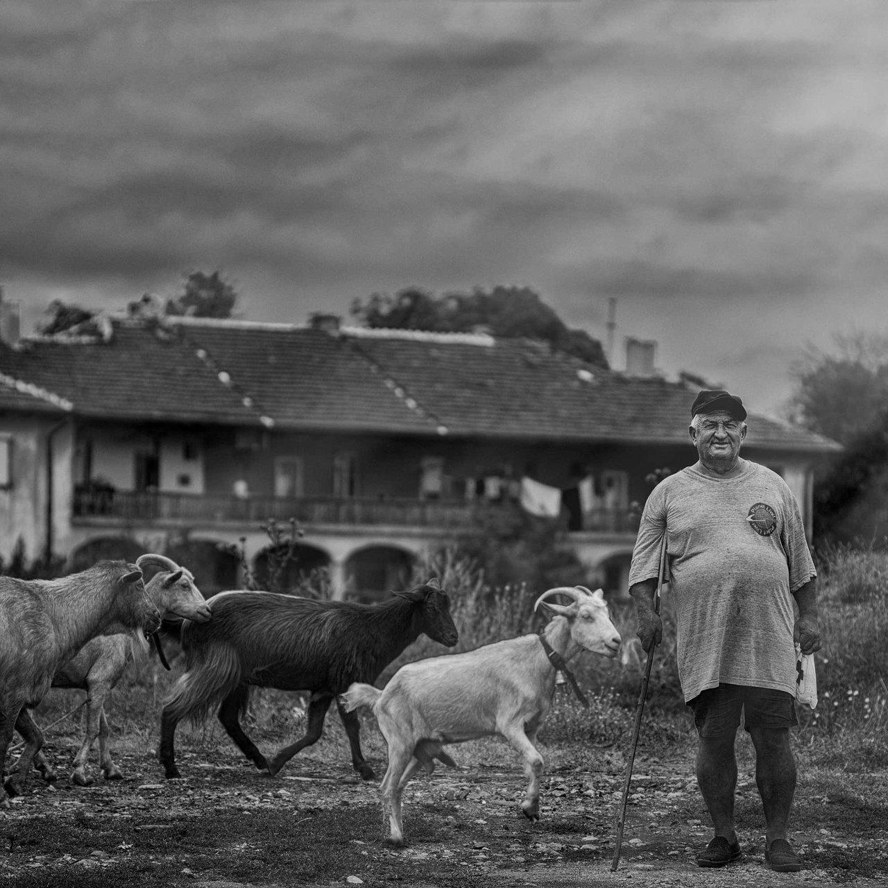 Photo in Daily round   Author Atanas Kutev - A.tnsk   PHOTO FORUM