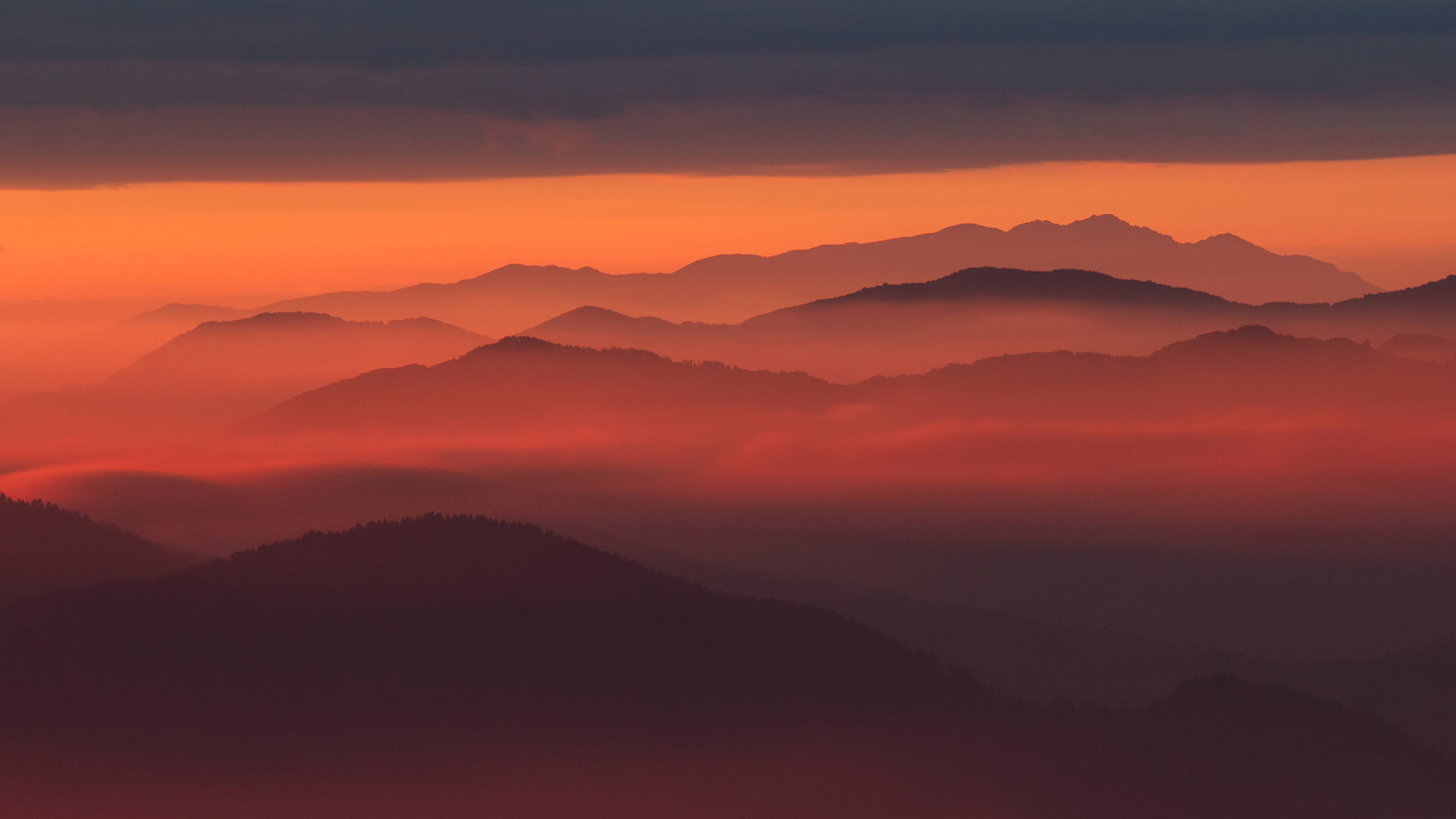 Гънките на Родопа планина от Tyuncher Eminov - tyunkata