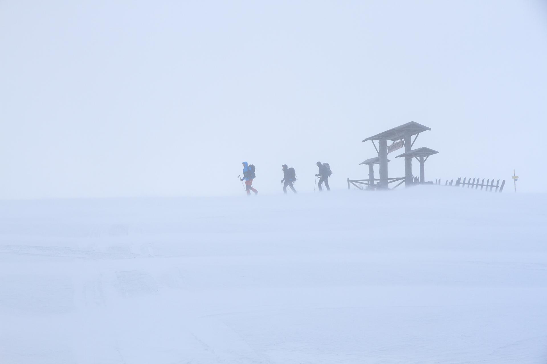 Зима от емилиян евдокимов - evdokimov_emo