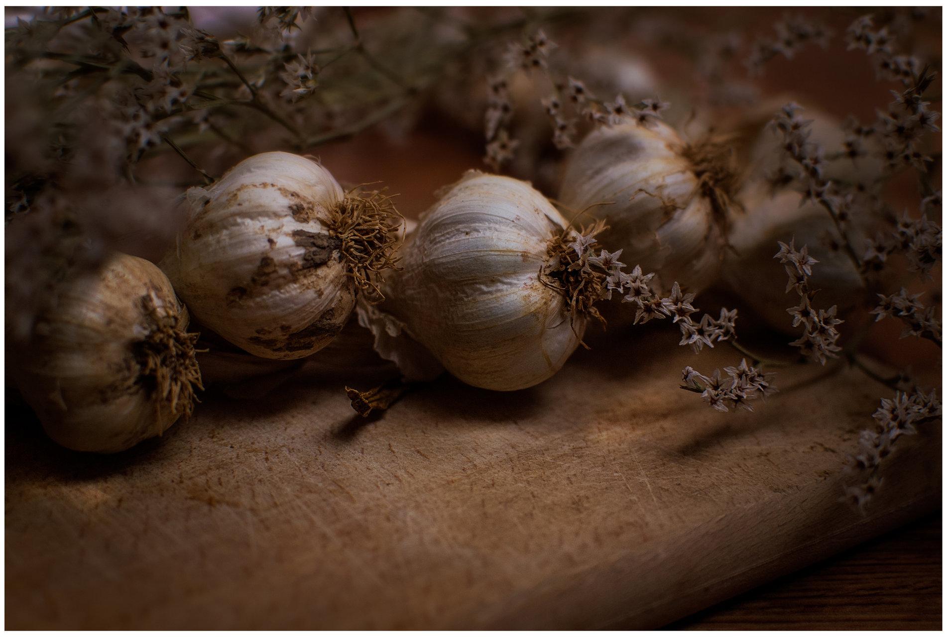Garlic... от AsenAndreev - hunter1934
