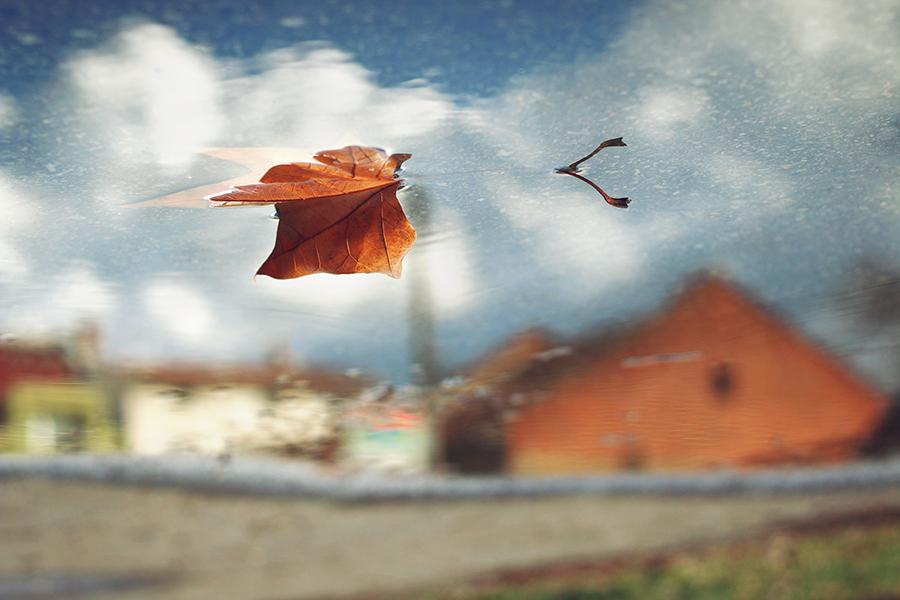 Пролетна есен! | Author BlueHello  - BlueHello | PHOTO FORUM