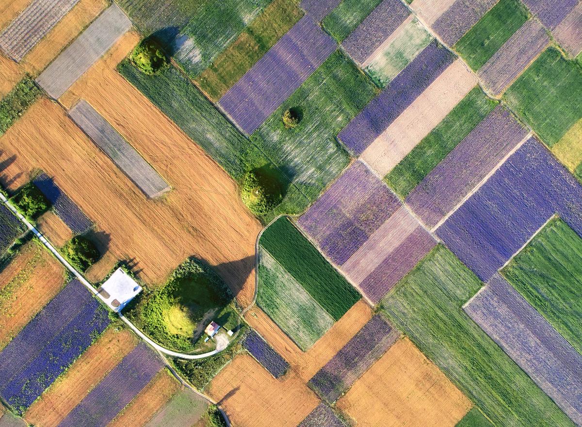 Photo in Landscape   Author Pencho Chukov - chukov   PHOTO FORUM