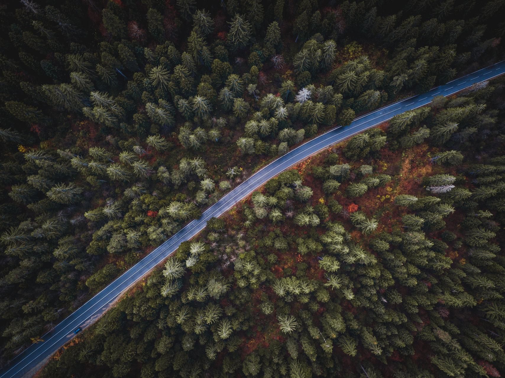 Пътят от Александър Чавдаров - Alex_Chav