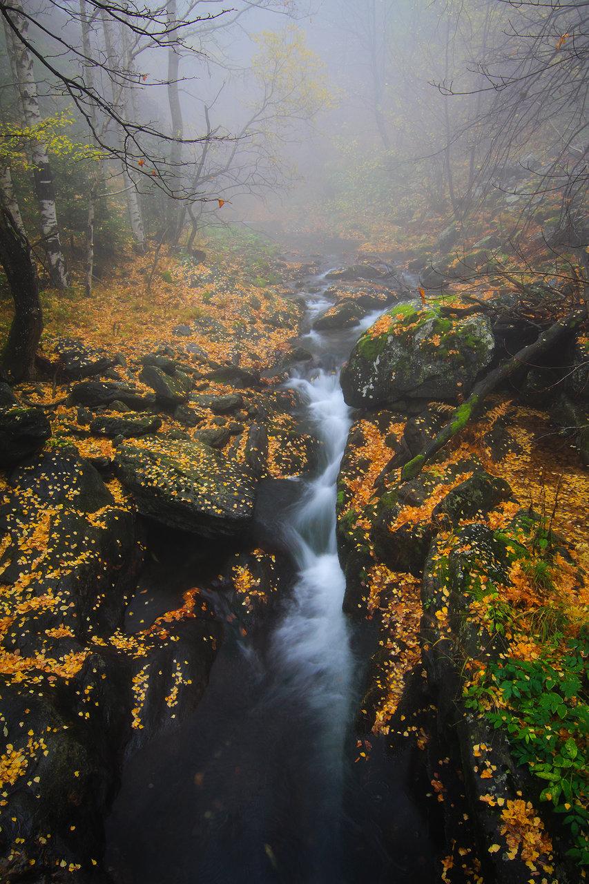 "''Късче есенна мистика"" от емилиян евдокимов - evdokimov_emo"