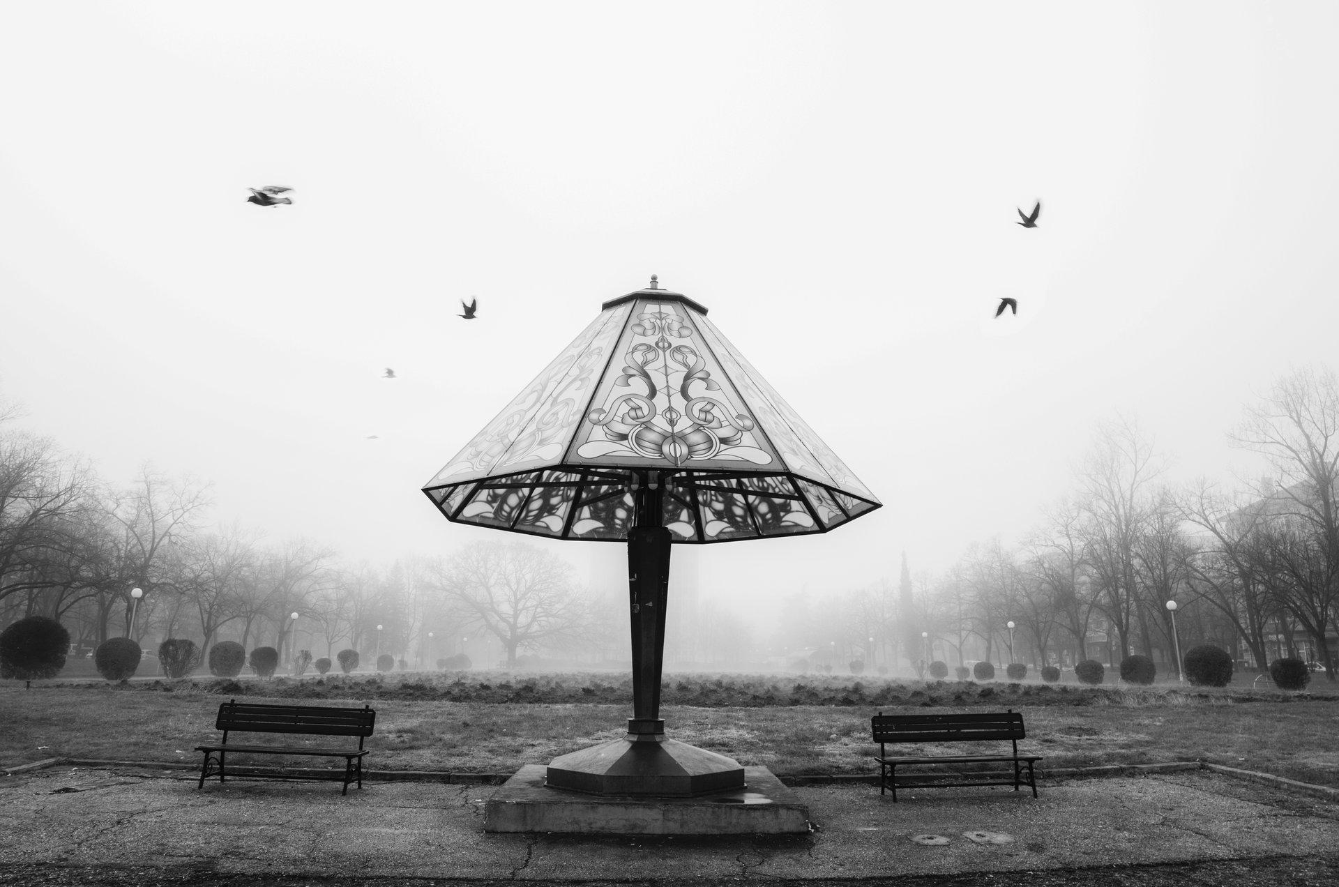Photo in Everything else   Author Nikolaj Dobrev - N.Dobrev   PHOTO FORUM