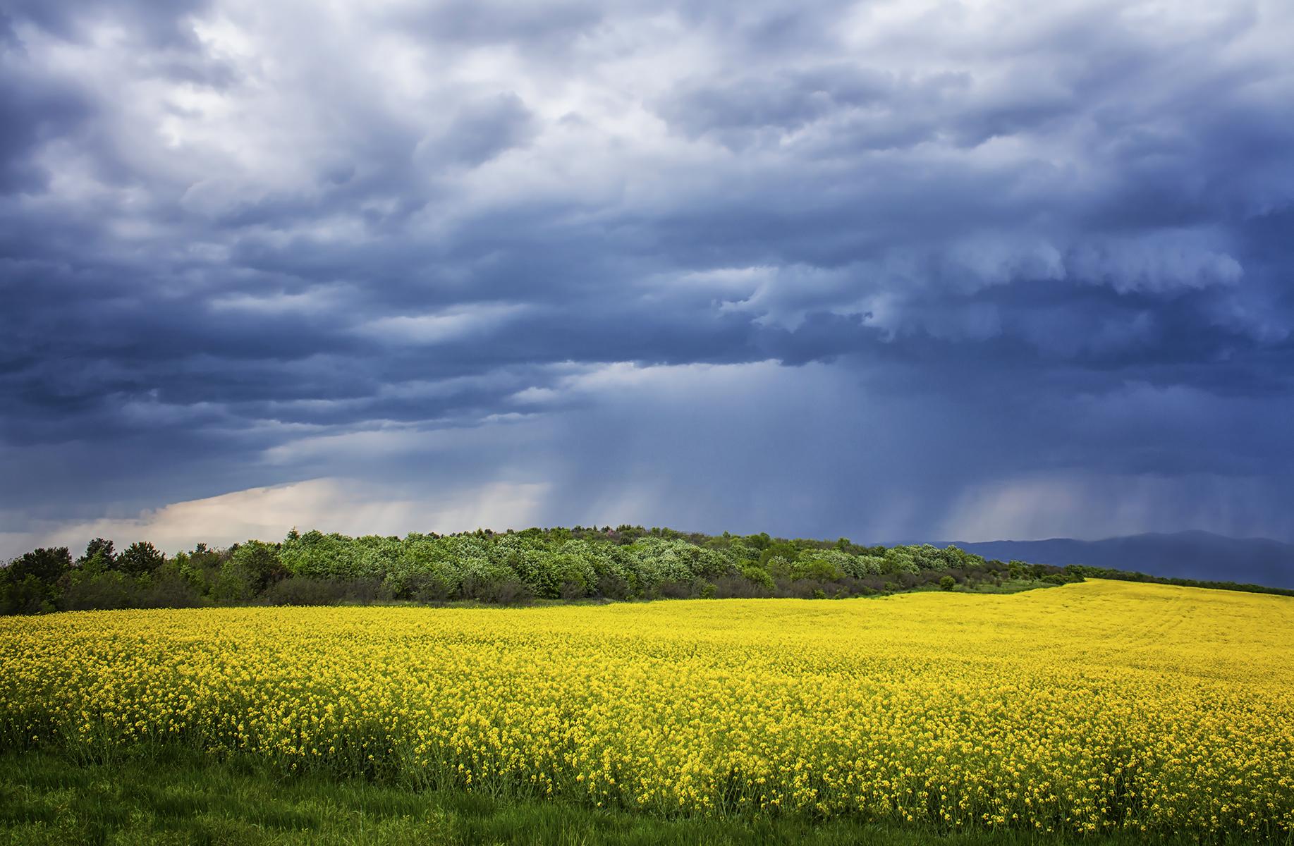 Пролетни настроения | Author Hristo Stefanov - ico10 | PHOTO FORUM