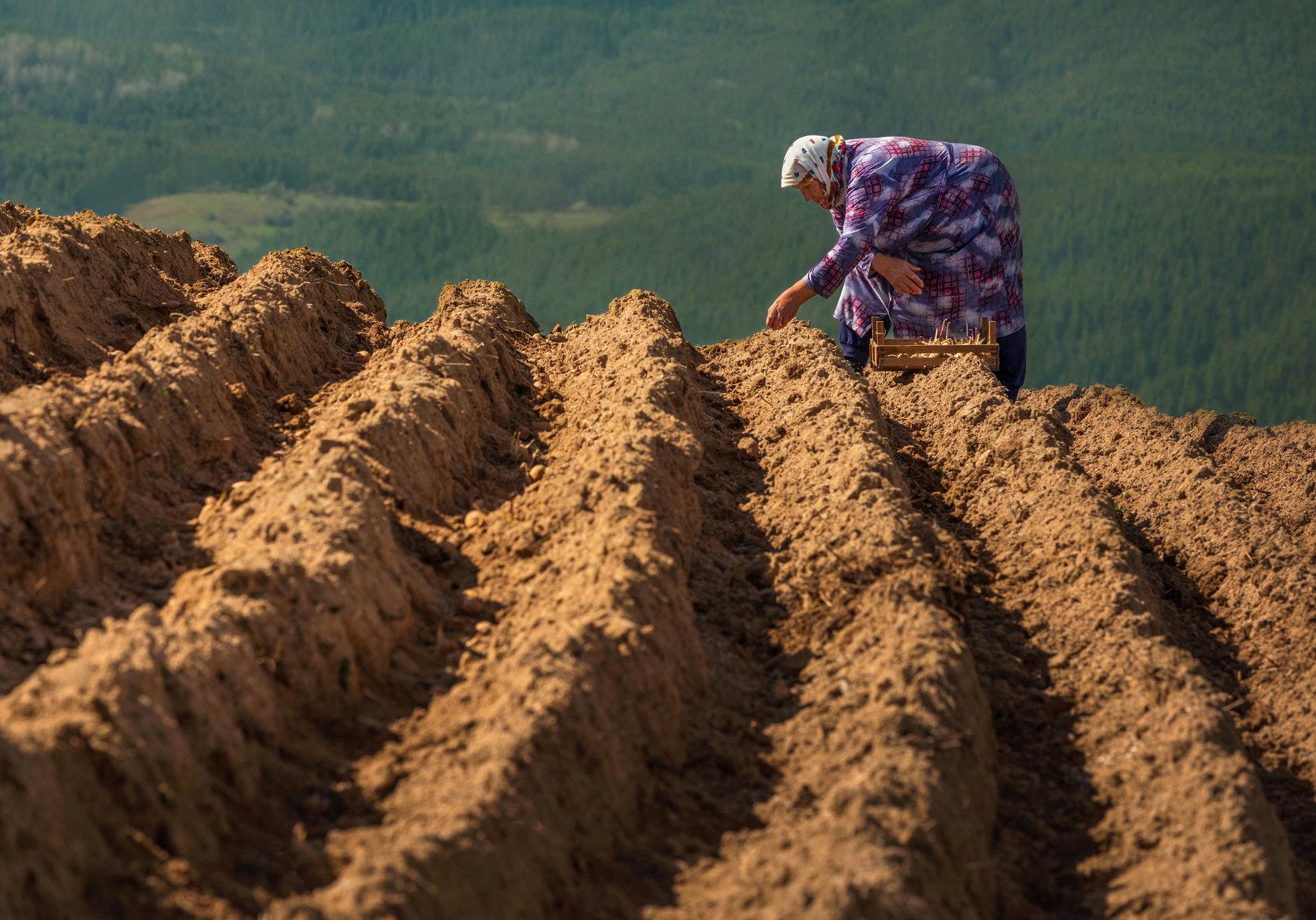 Земята и хората | Author Miroslav_Mominski | PHOTO FORUM