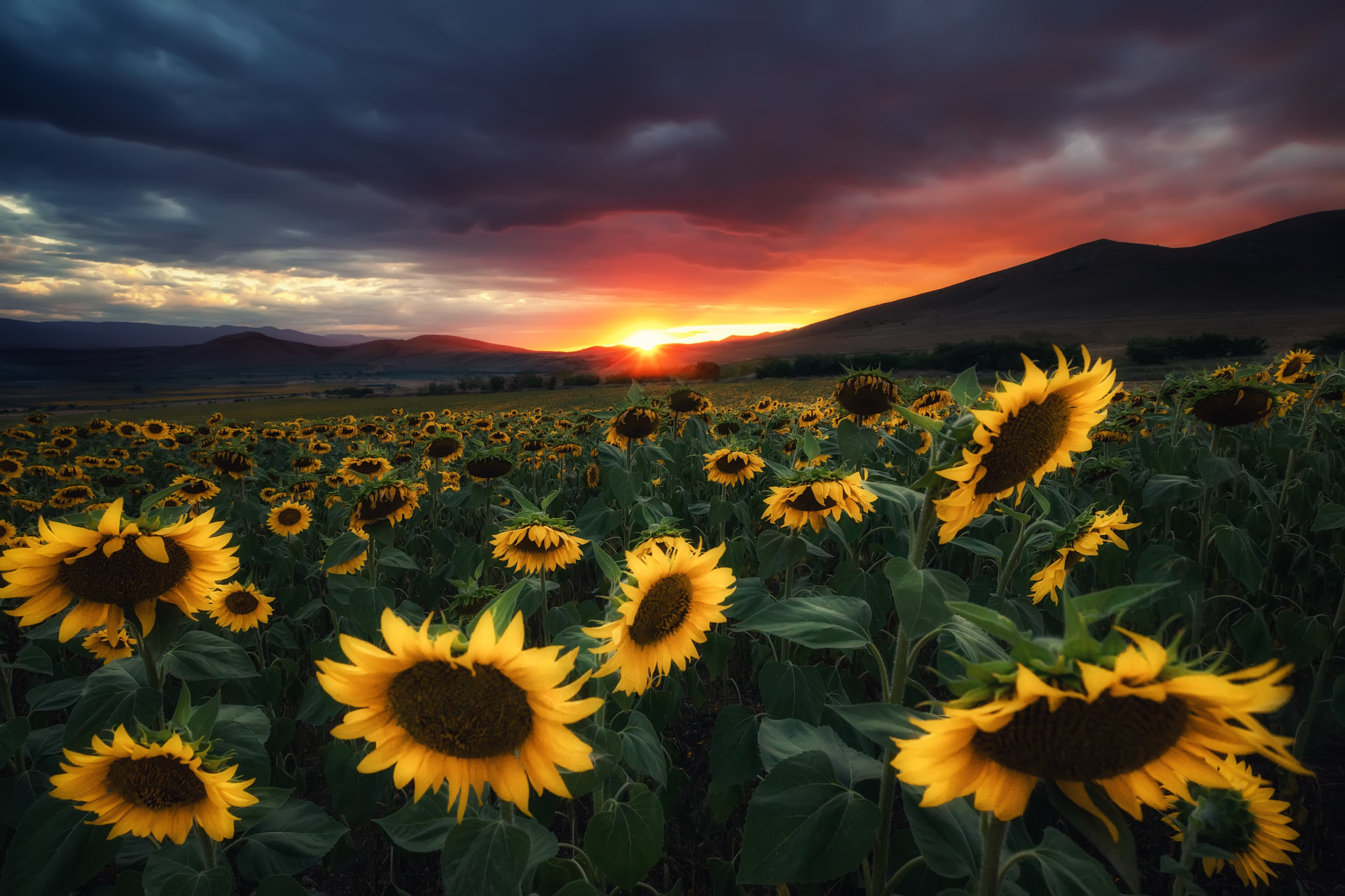 Photo in Landscape | Author Kostadin Madzharov - _koko_ | PHOTO FORUM