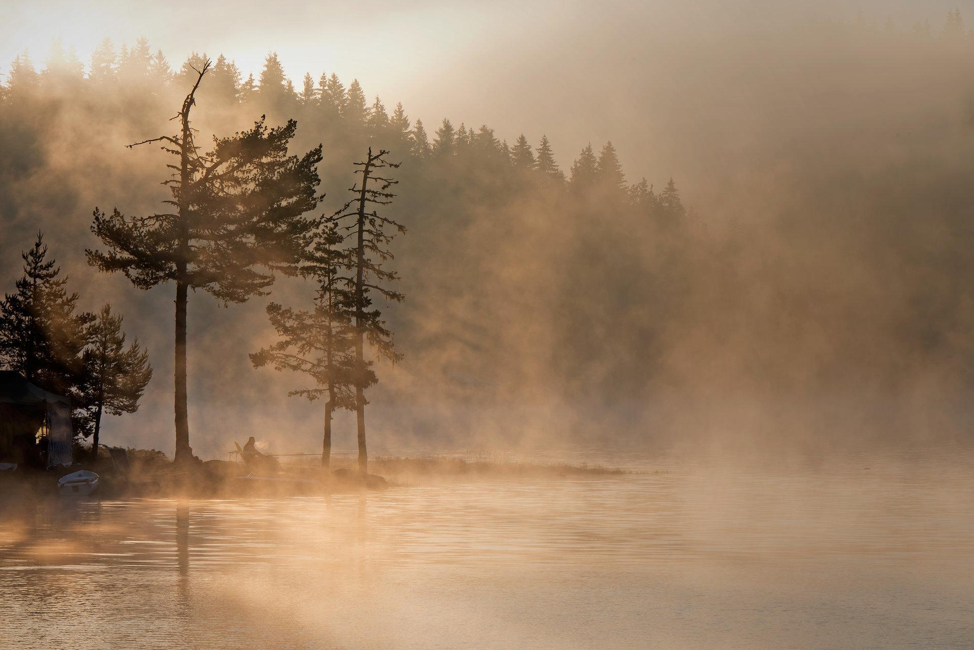 Утро на Широка поляна | Author Rumen Topalov - rtopalov1 | PHOTO FORUM