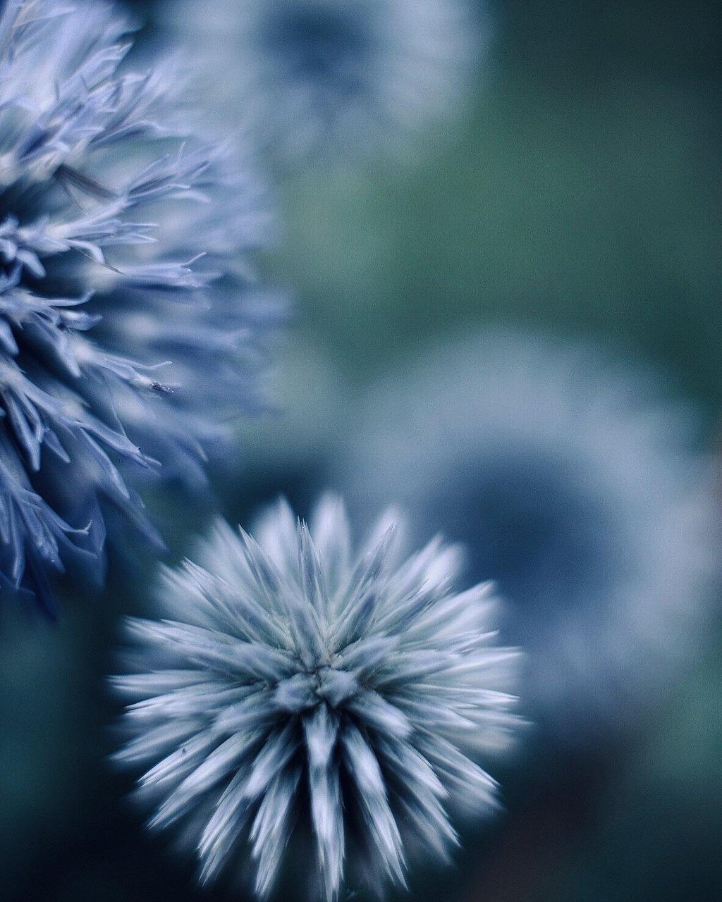 В часа на безкрайното синьо... | Author Георги Байчев - sevenseconds | PHOTO FORUM