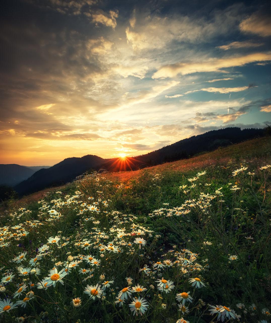 Photo in Landscape | Author _koko_ | PHOTO FORUM