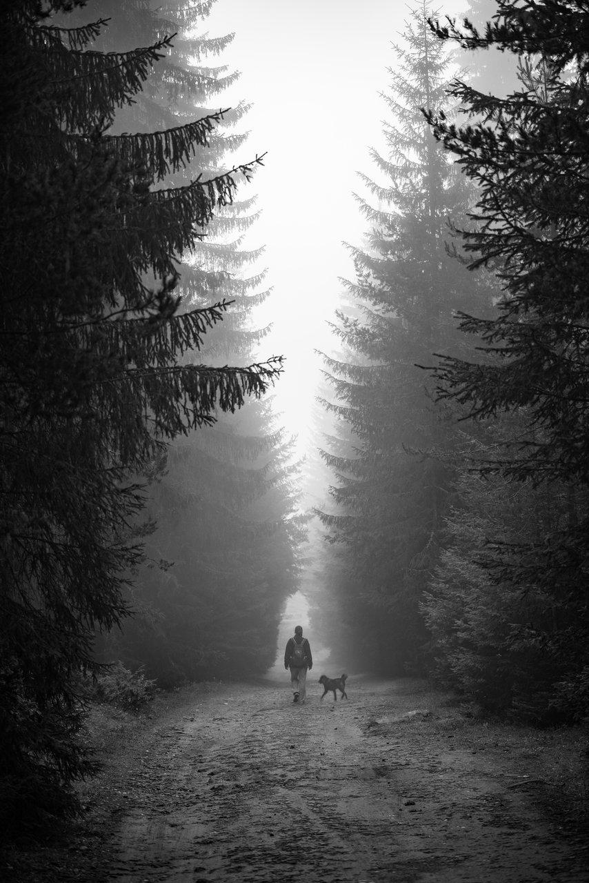 Двама | Author Noncho Ivanov - non40 | PHOTO FORUM