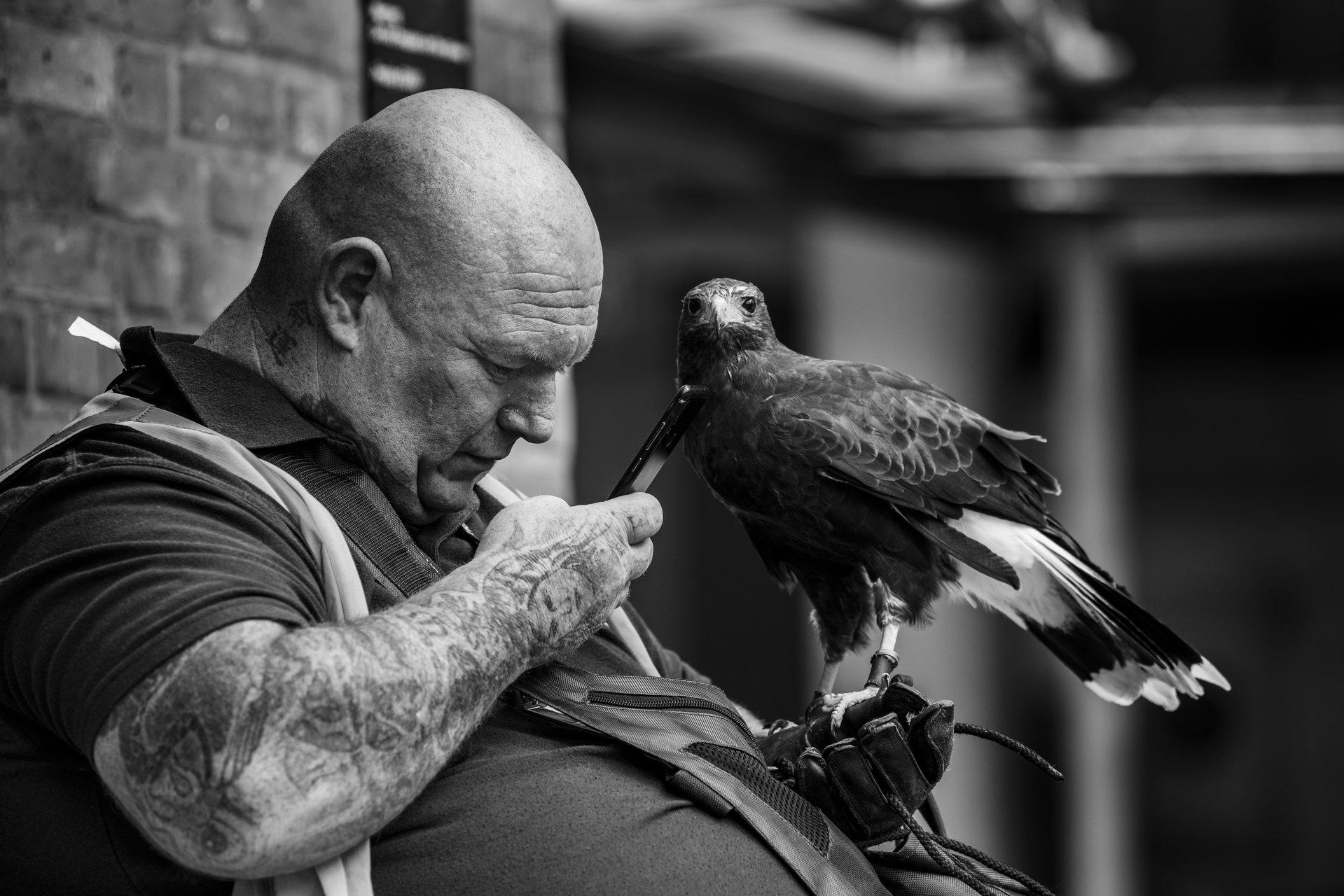 корелация | Author Jimmy Stoikov - JimmyStoikov | PHOTO FORUM