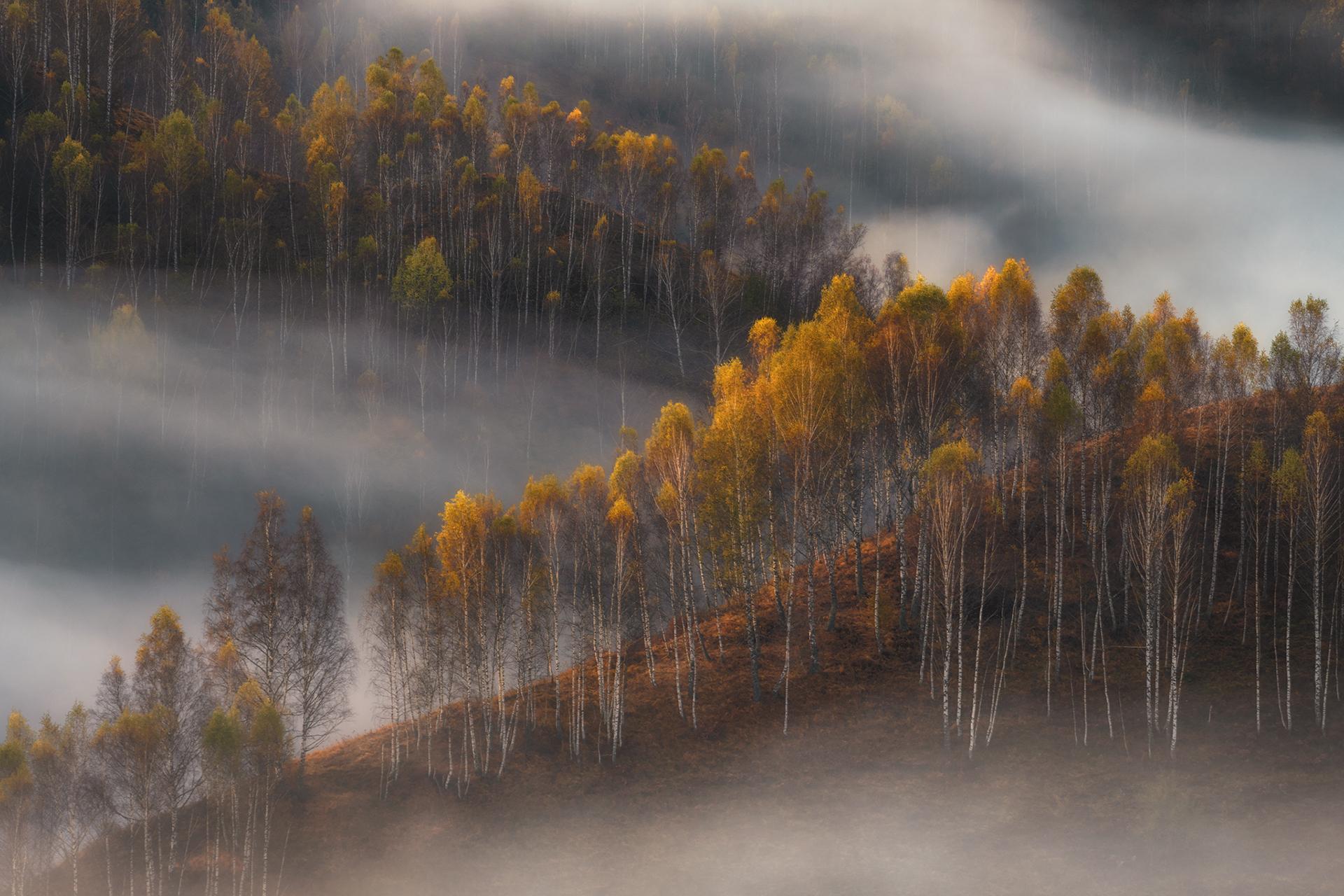 Усещане за есен   Author Krasi Matarov - Muzka   PHOTO FORUM