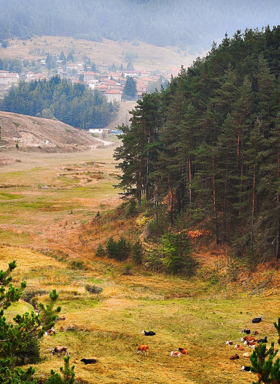 Photo in Landscape | Author kolmik | PHOTO FORUM