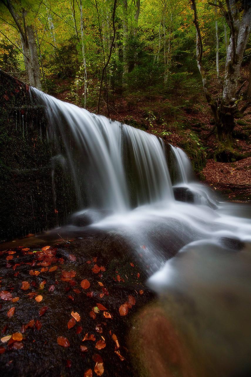 Photo in Nature | Author iamanovoice | PHOTO FORUM