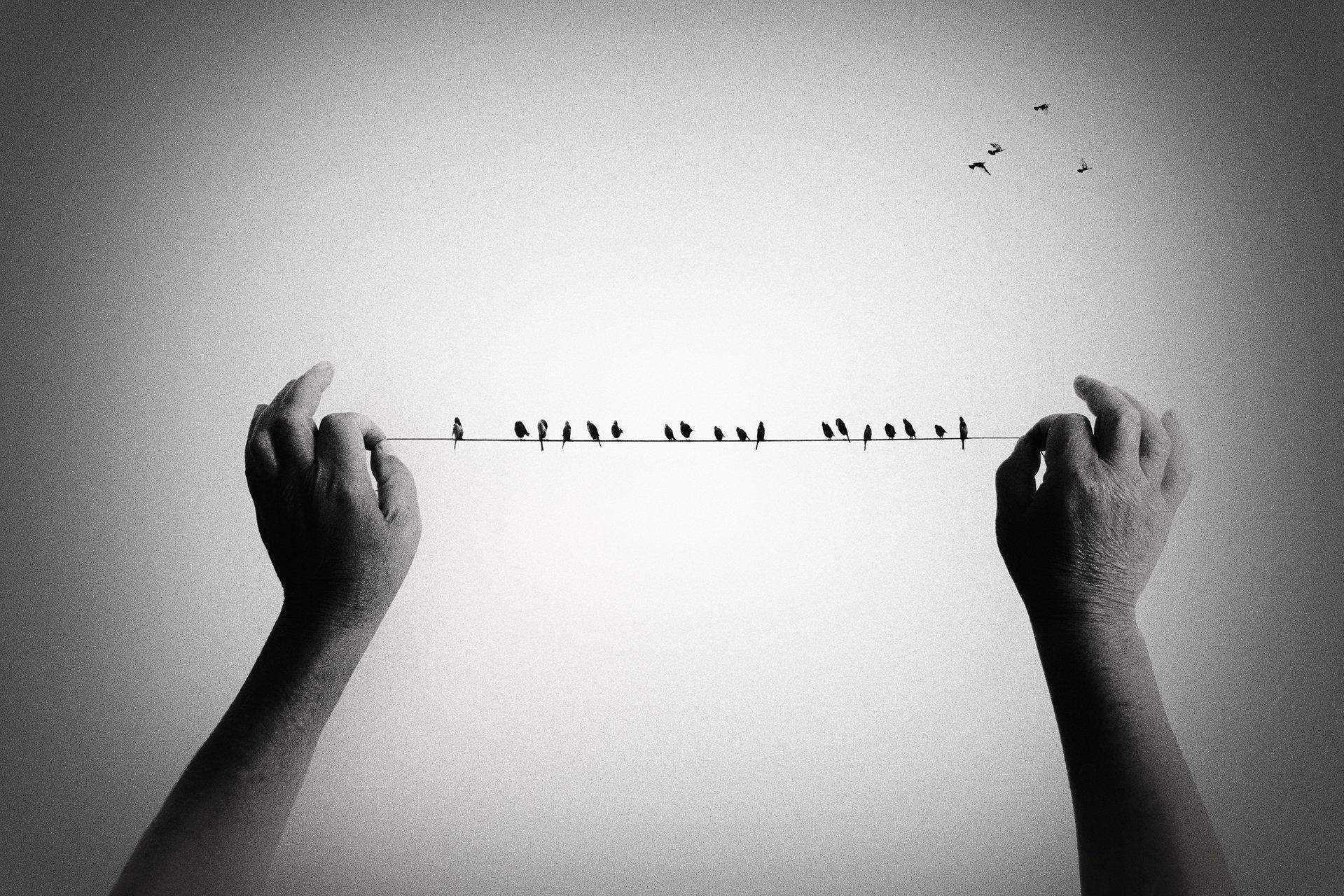 Небето ми е граница.   Author leica_m   PHOTO FORUM