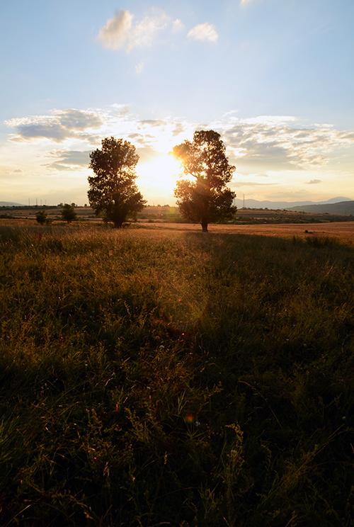 Photo in Landscape   Author a_p_   PHOTO FORUM