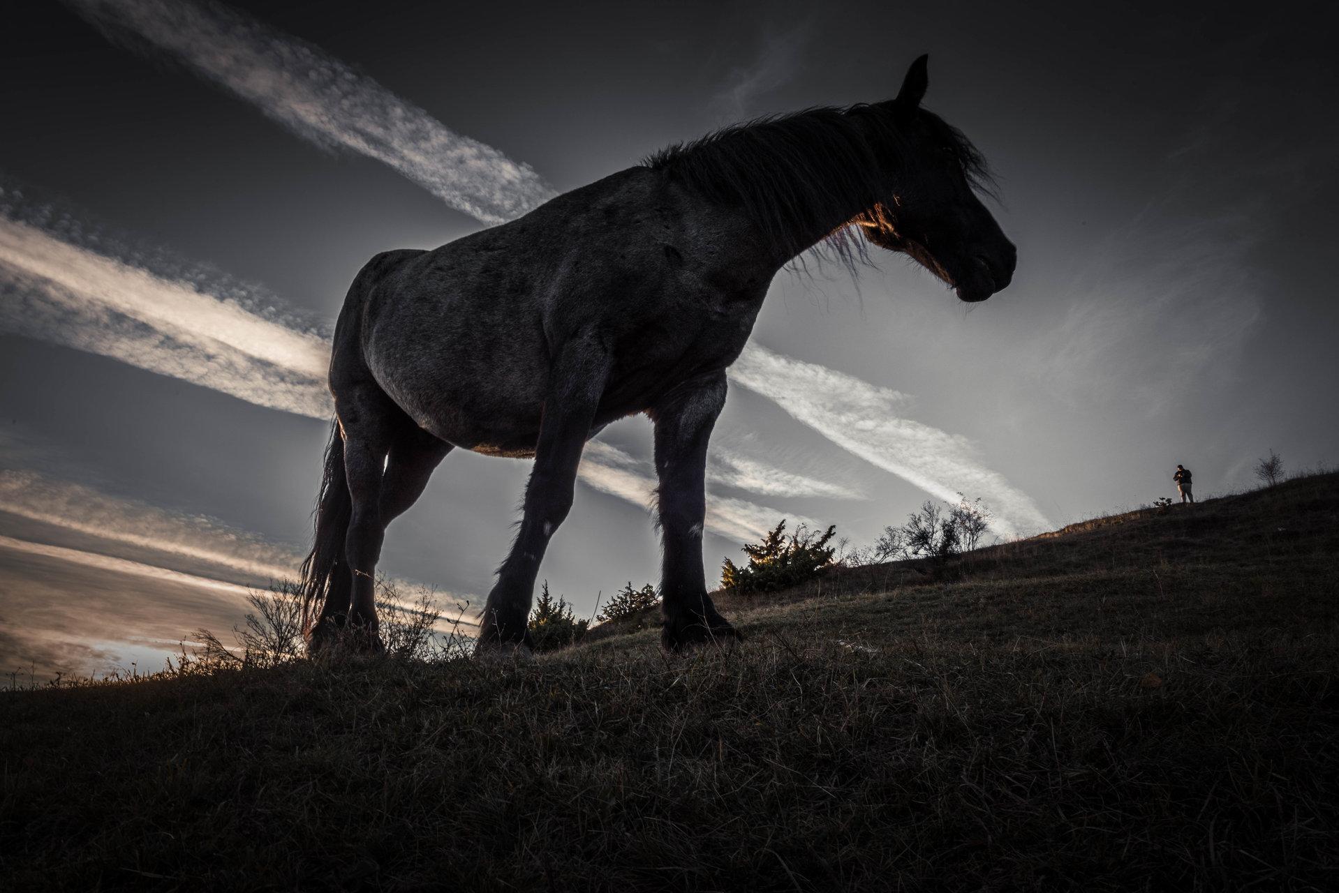 Великана и джуджето | Author Pablo79 | PHOTO FORUM