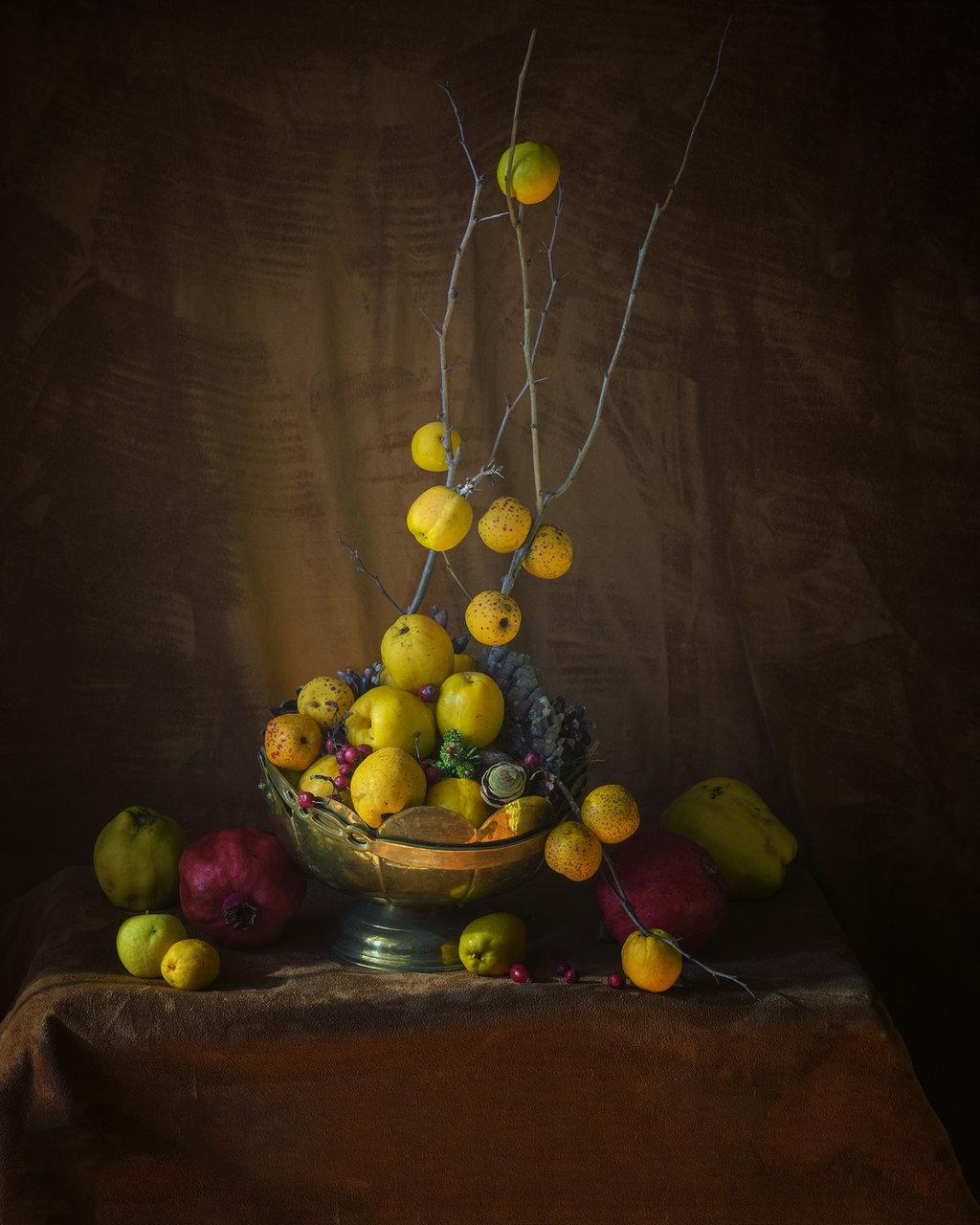 Хеномелес /японска дюля/ | Author ppaulina | PHOTO FORUM