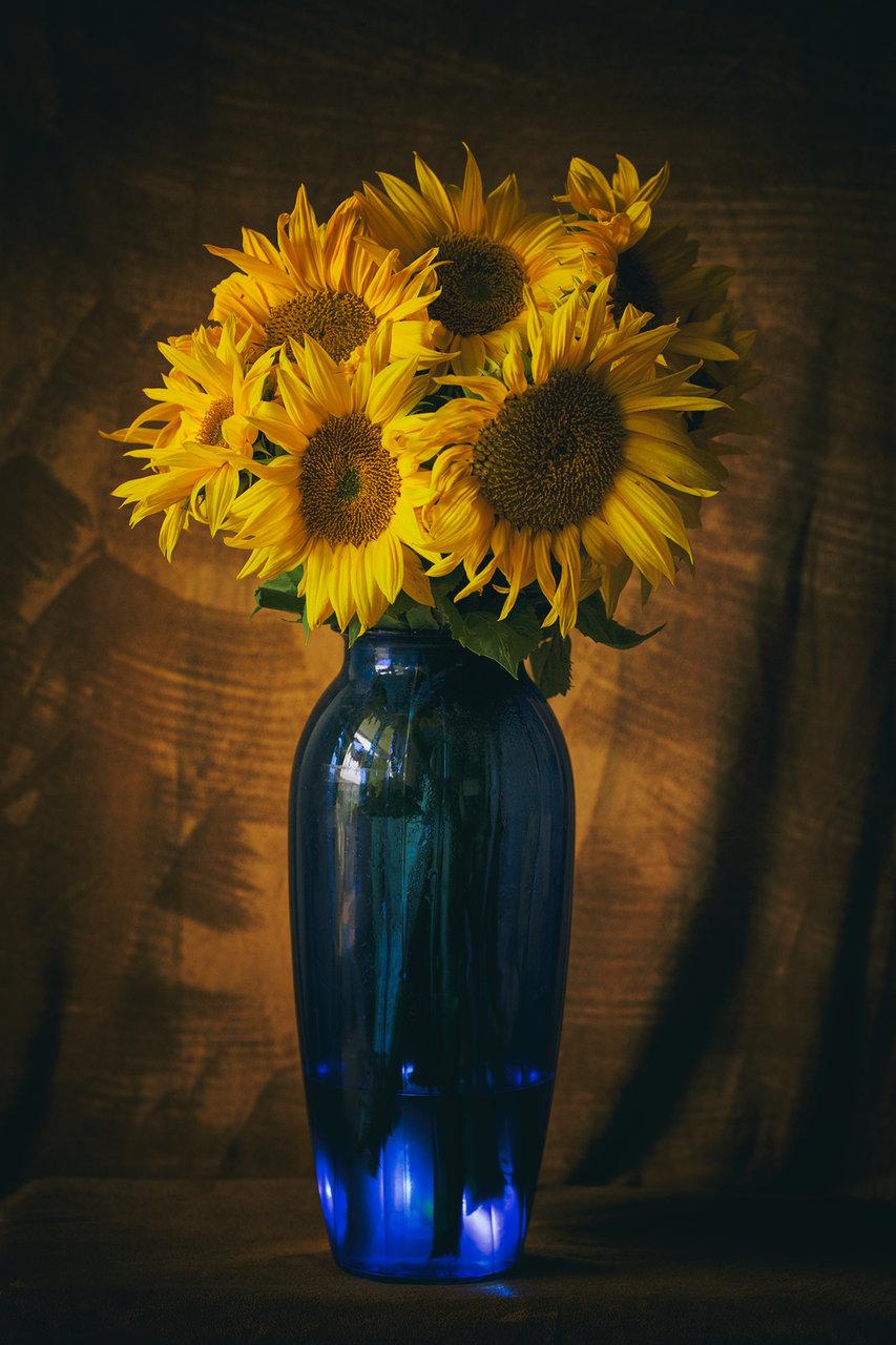 Photo in Naturmort | Author ppaulina | PHOTO FORUM