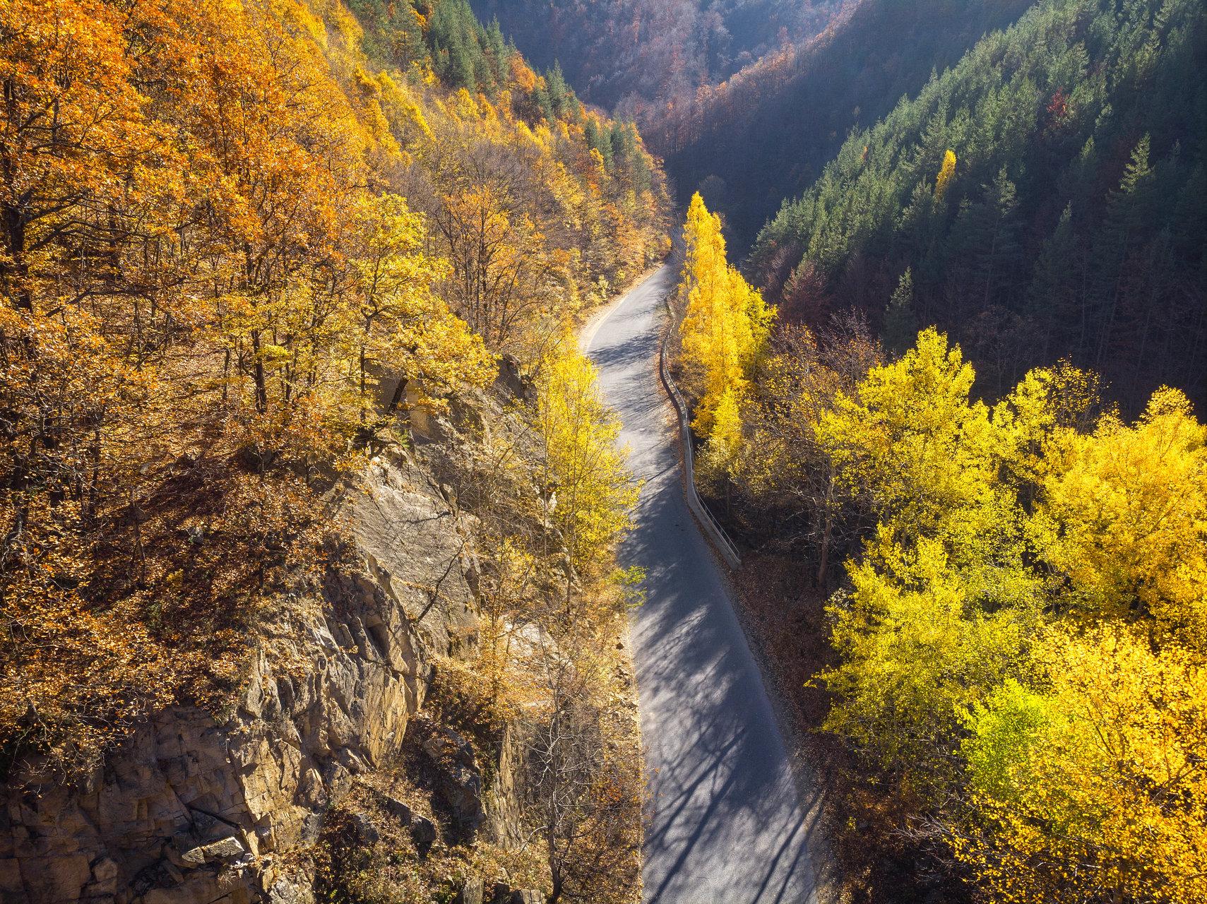 Път през есента   Author Minski   PHOTO FORUM