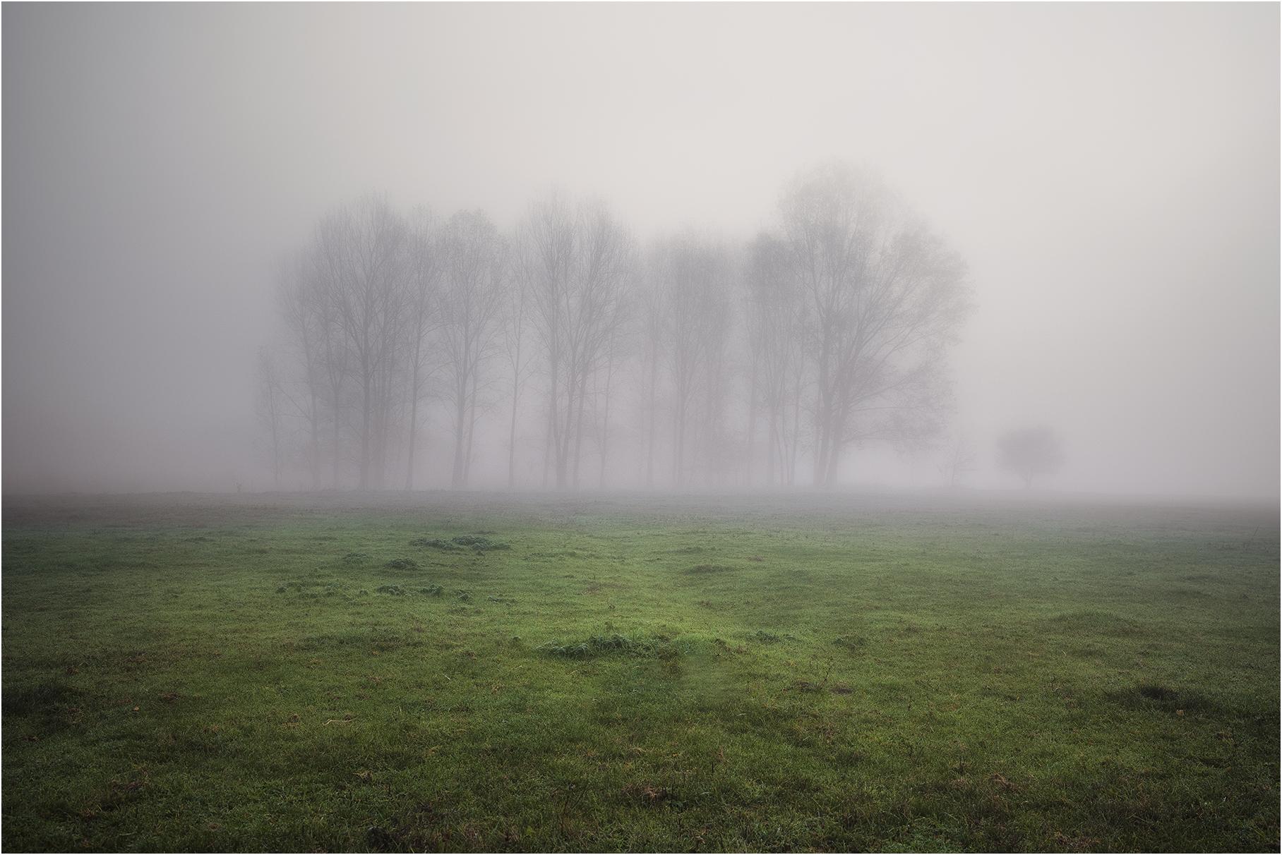 *   Author Hristo Yordanov - ATHOM   PHOTO FORUM