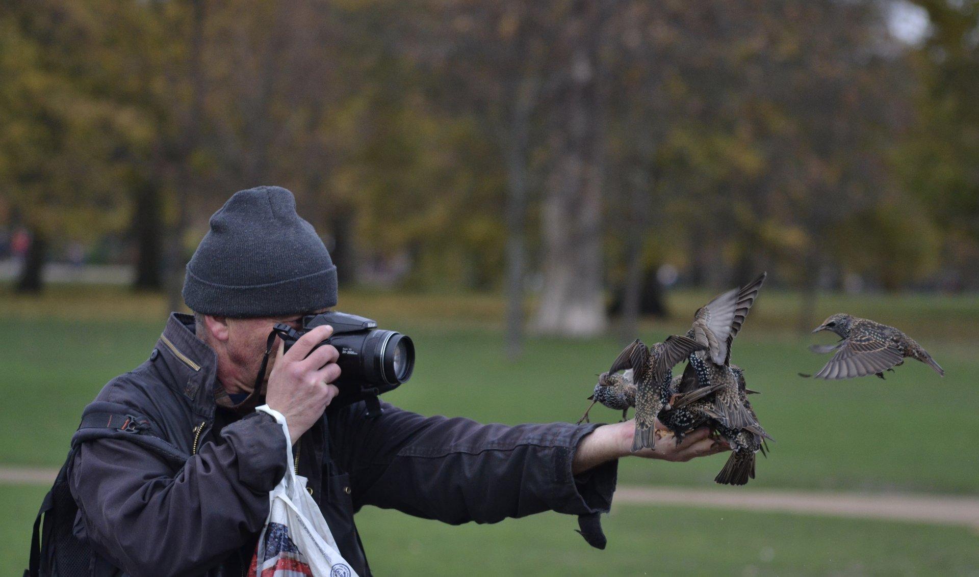 Да нахраним птичките. | Author Gettz | PHOTO FORUM