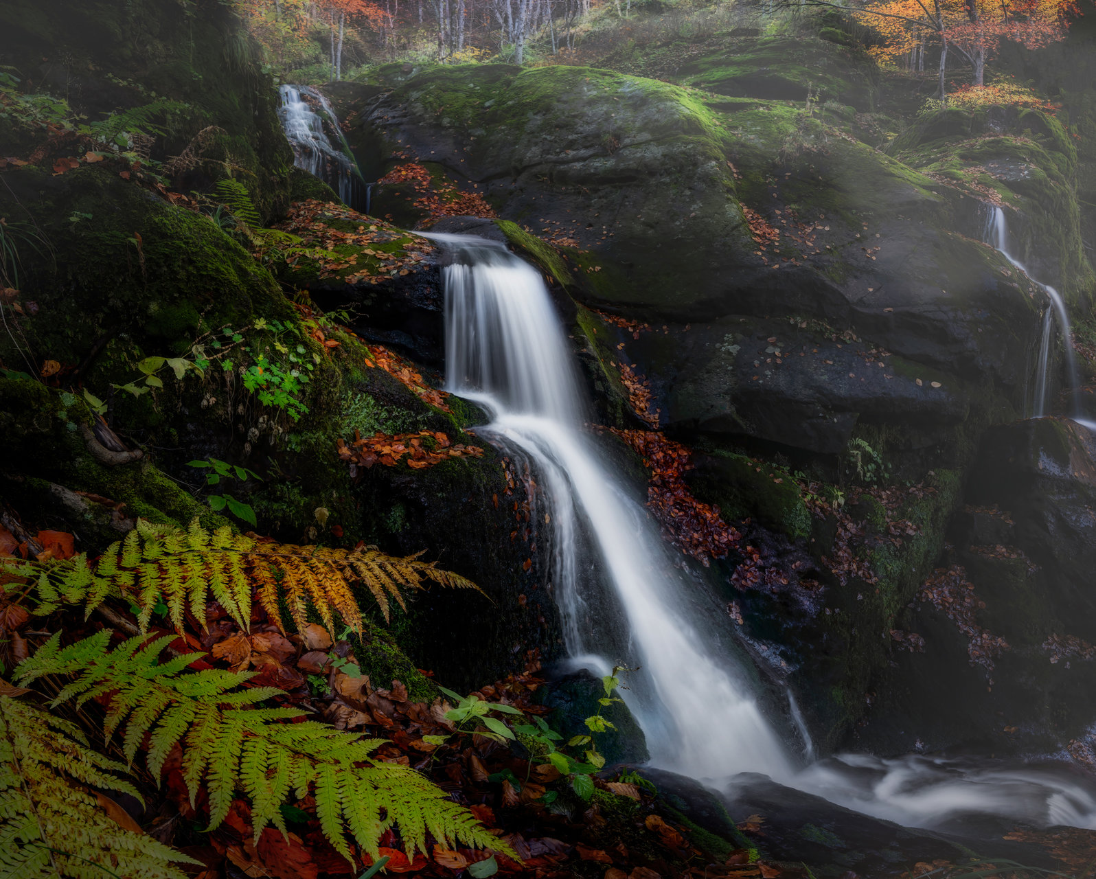 Photo in Landscape | Author edobg | PHOTO FORUM
