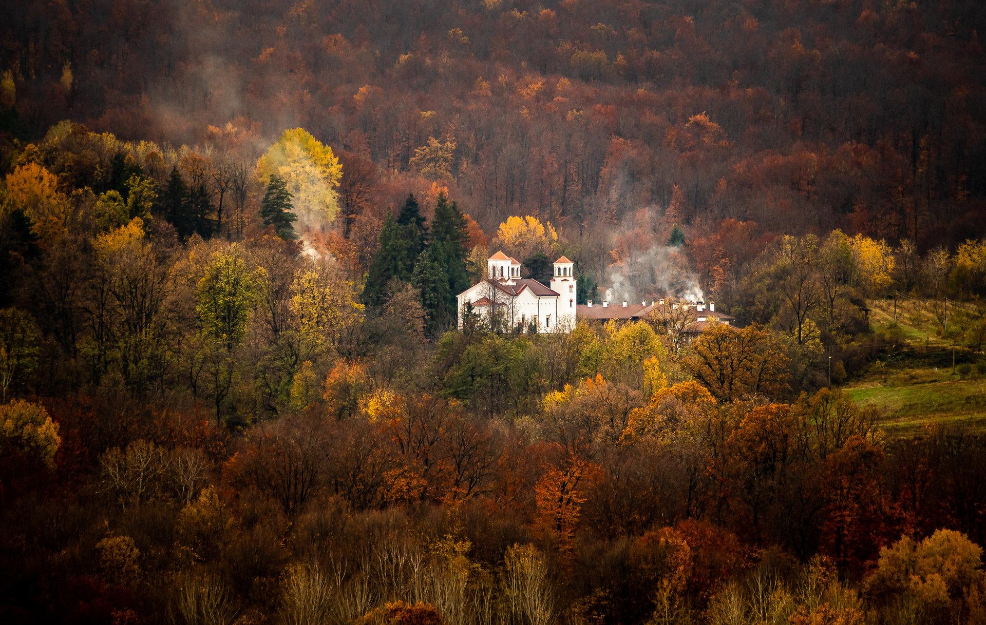 Сгушен в есента | Author sunnyhope | PHOTO FORUM