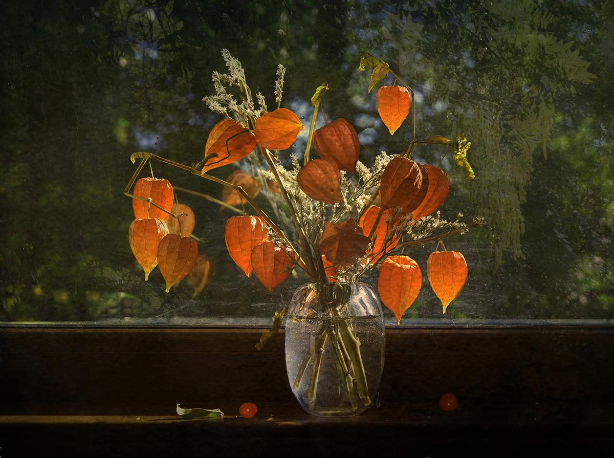 Есенно слънце | Author polana | PHOTO FORUM