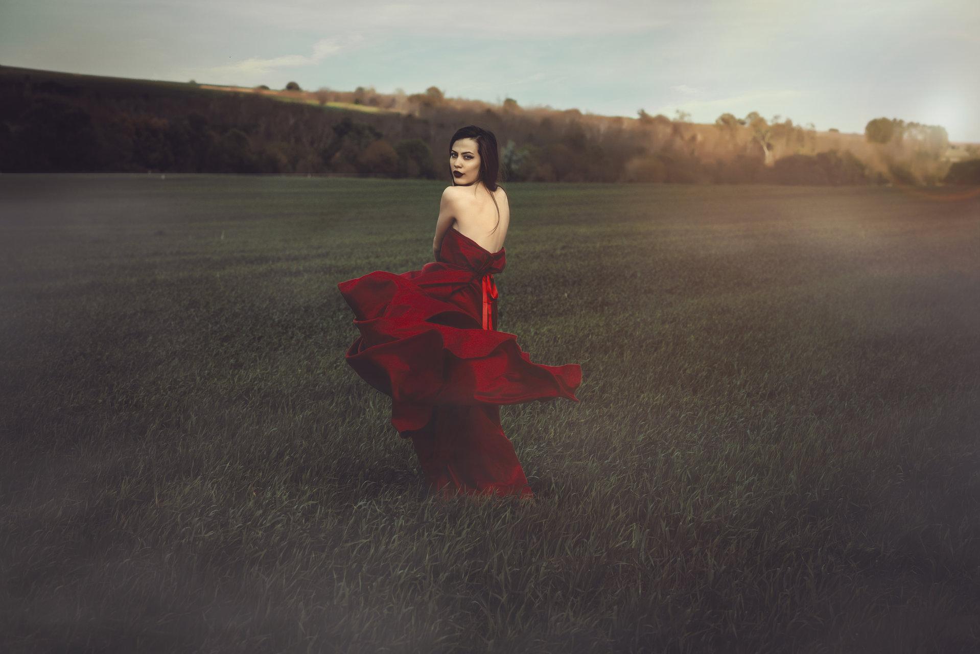 Red rose от Emil Topalov - embata