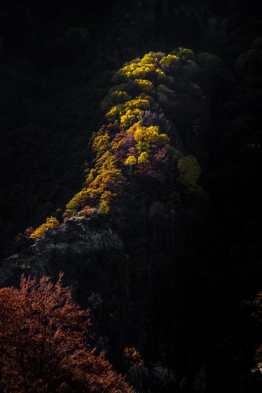 Есенни проблясъци | Author sve  - xSileNce | PHOTO FORUM