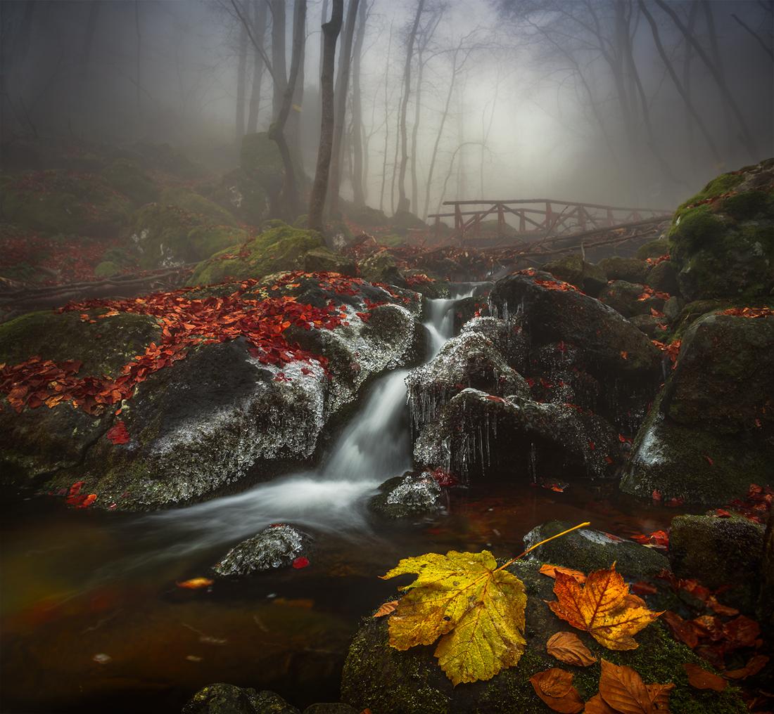 Като спомен | Author Alexander Alexandrov - sandart | PHOTO FORUM