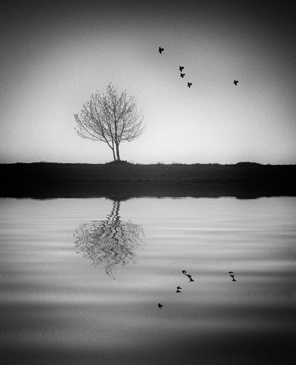 | `` | Author leica_m | PHOTO FORUM