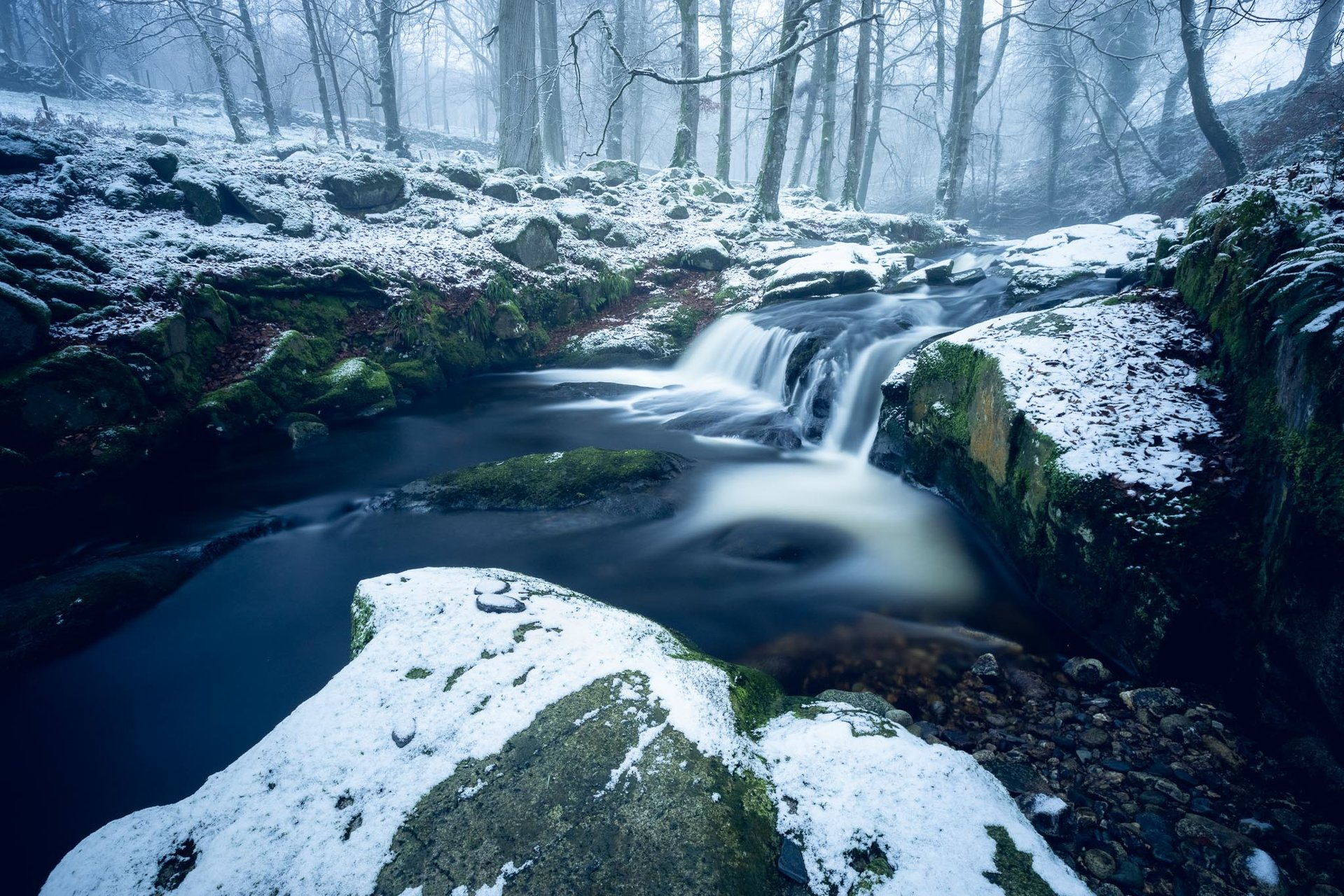 Photo in Nature | Author bayivobg70 | PHOTO FORUM
