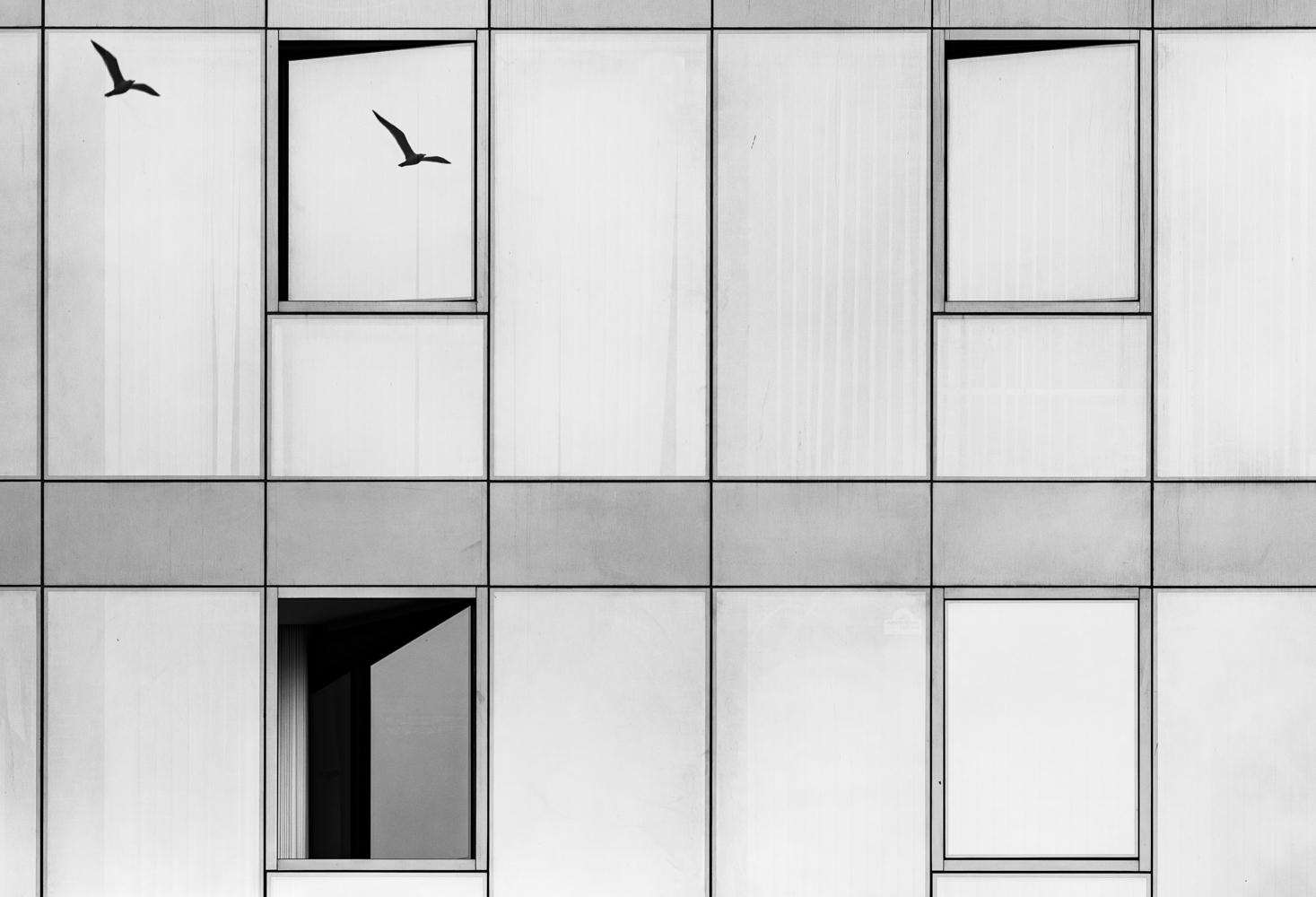 Алгоритъм... | Author Standil | PHOTO FORUM